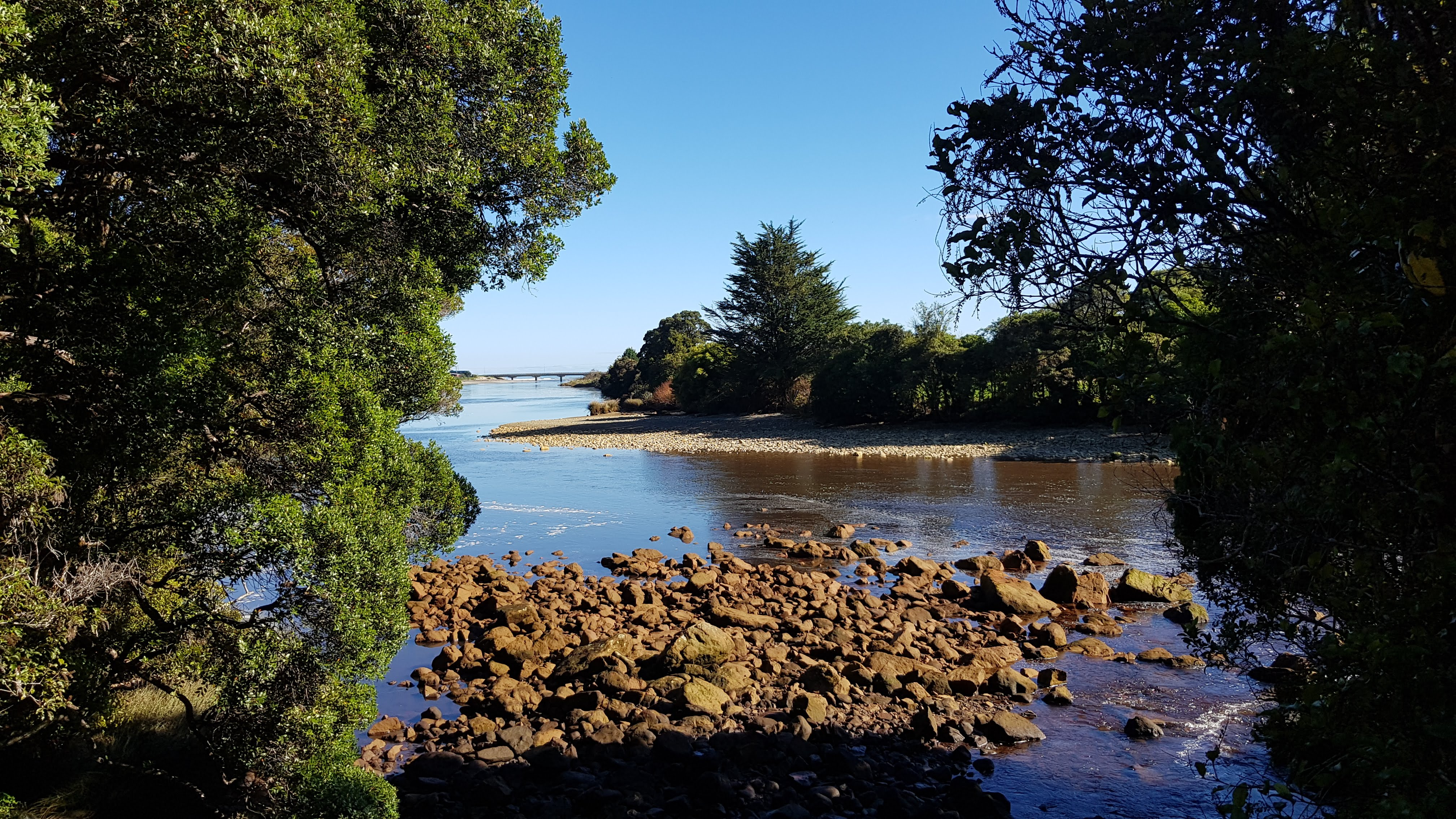 Great view of the Ngakawau River mouth from the Charming Creek Walkway