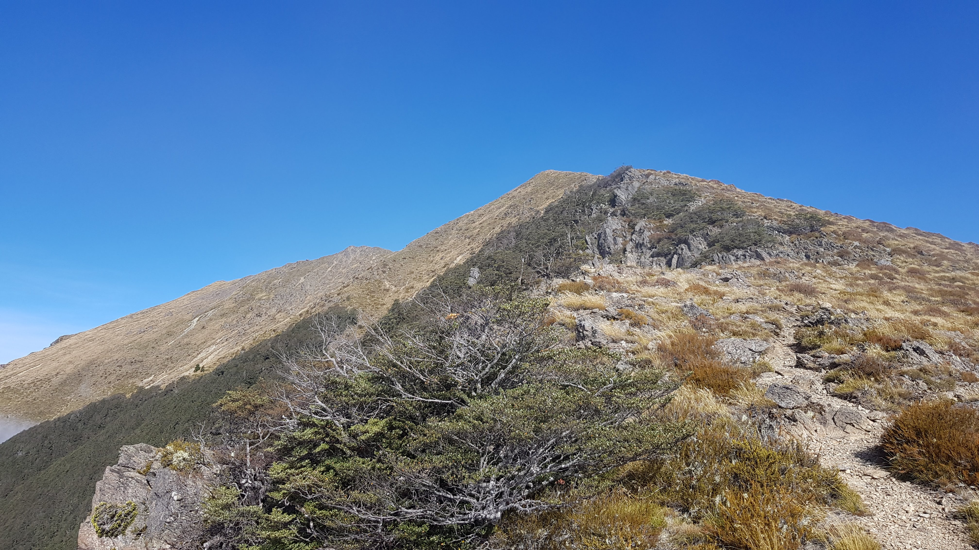 Following the ridgeline up to the summit
