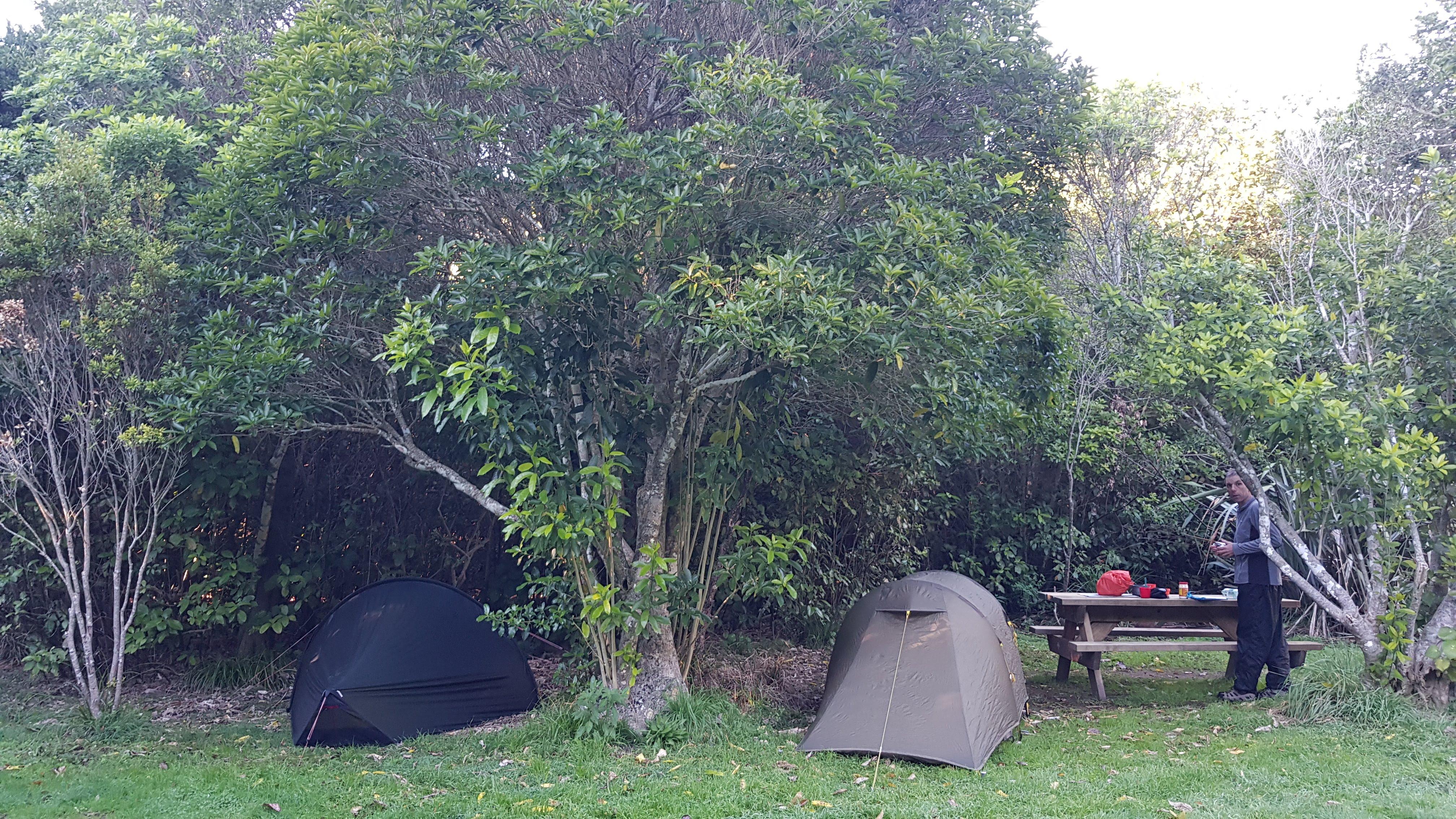 Camping at Whariwharangi