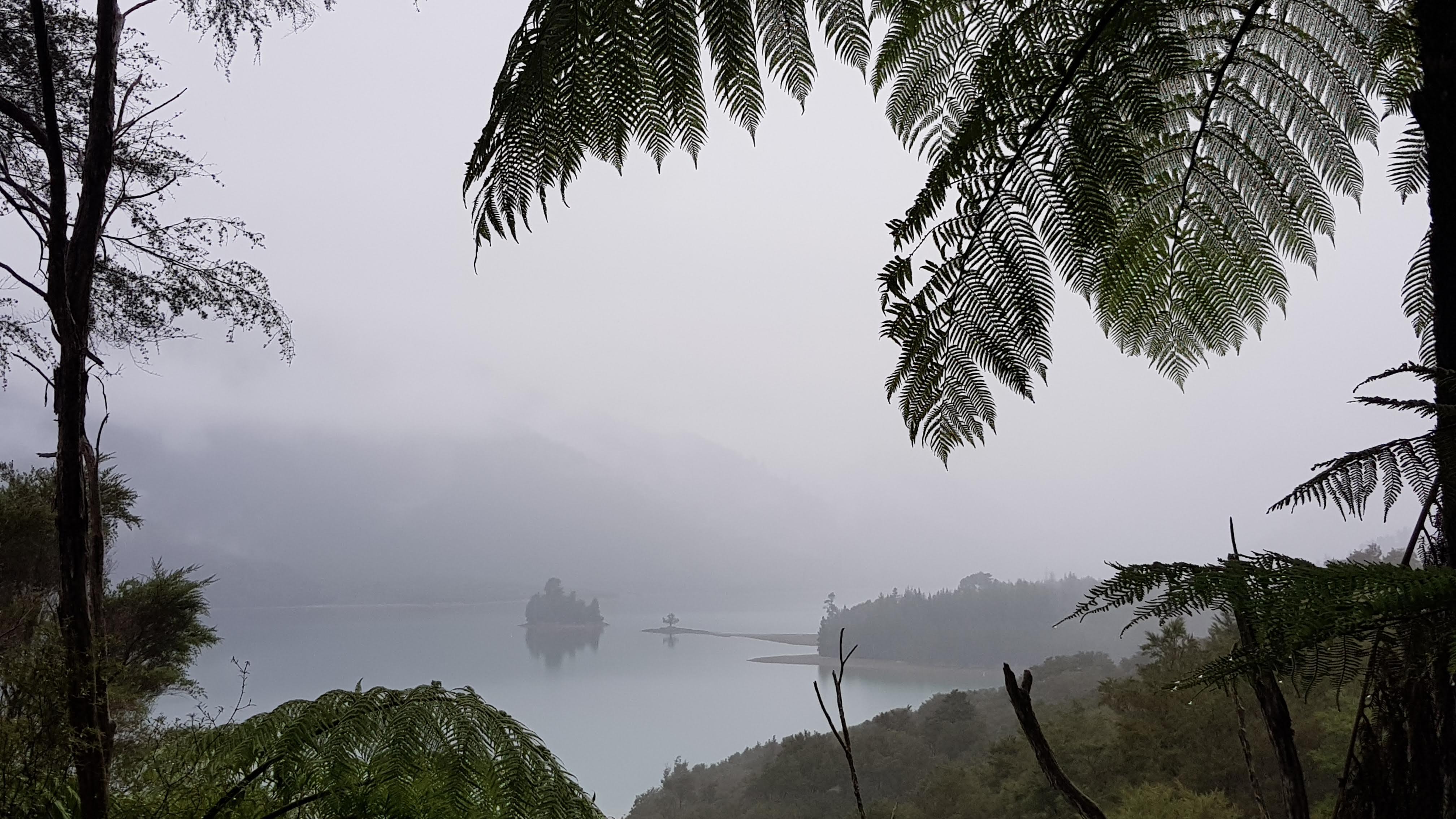 Views of Nydia Bay