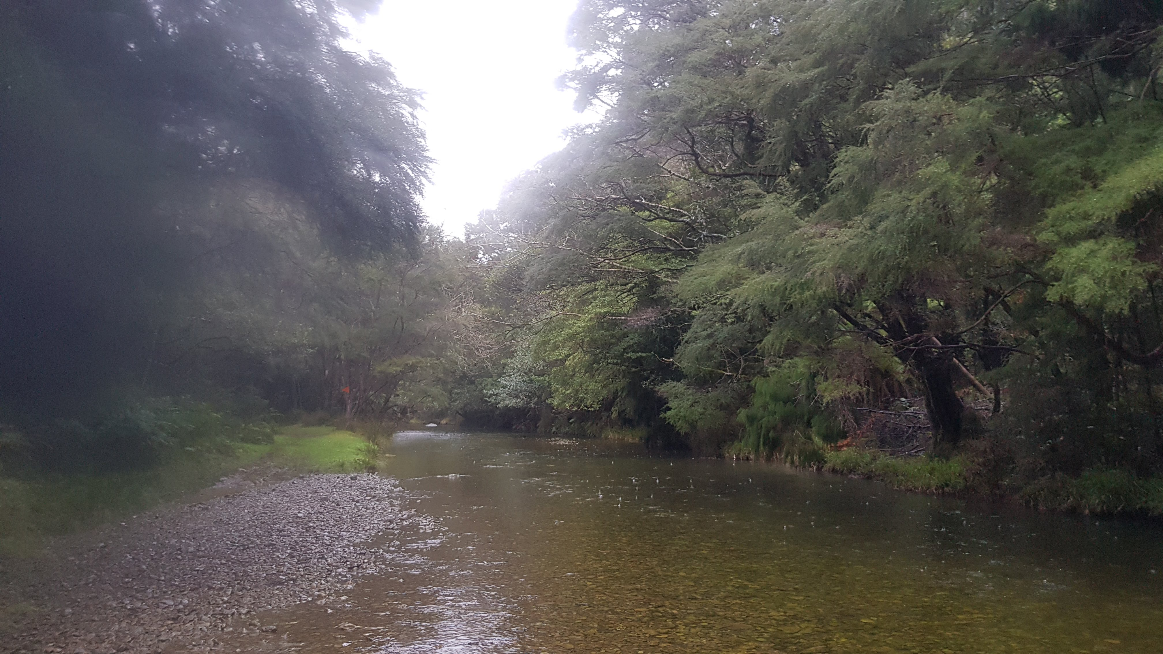 Crossing the stream close to Nydia Lodge