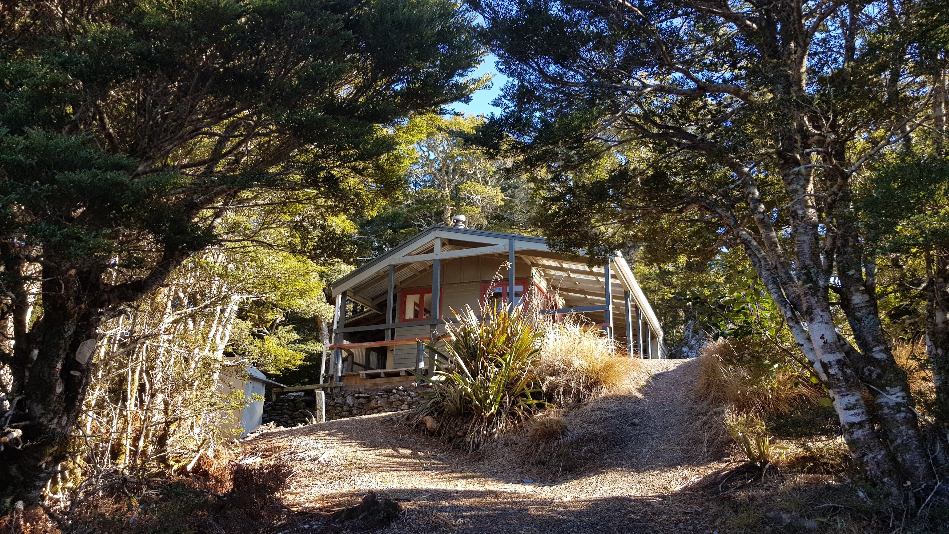 Mount Arthur hut