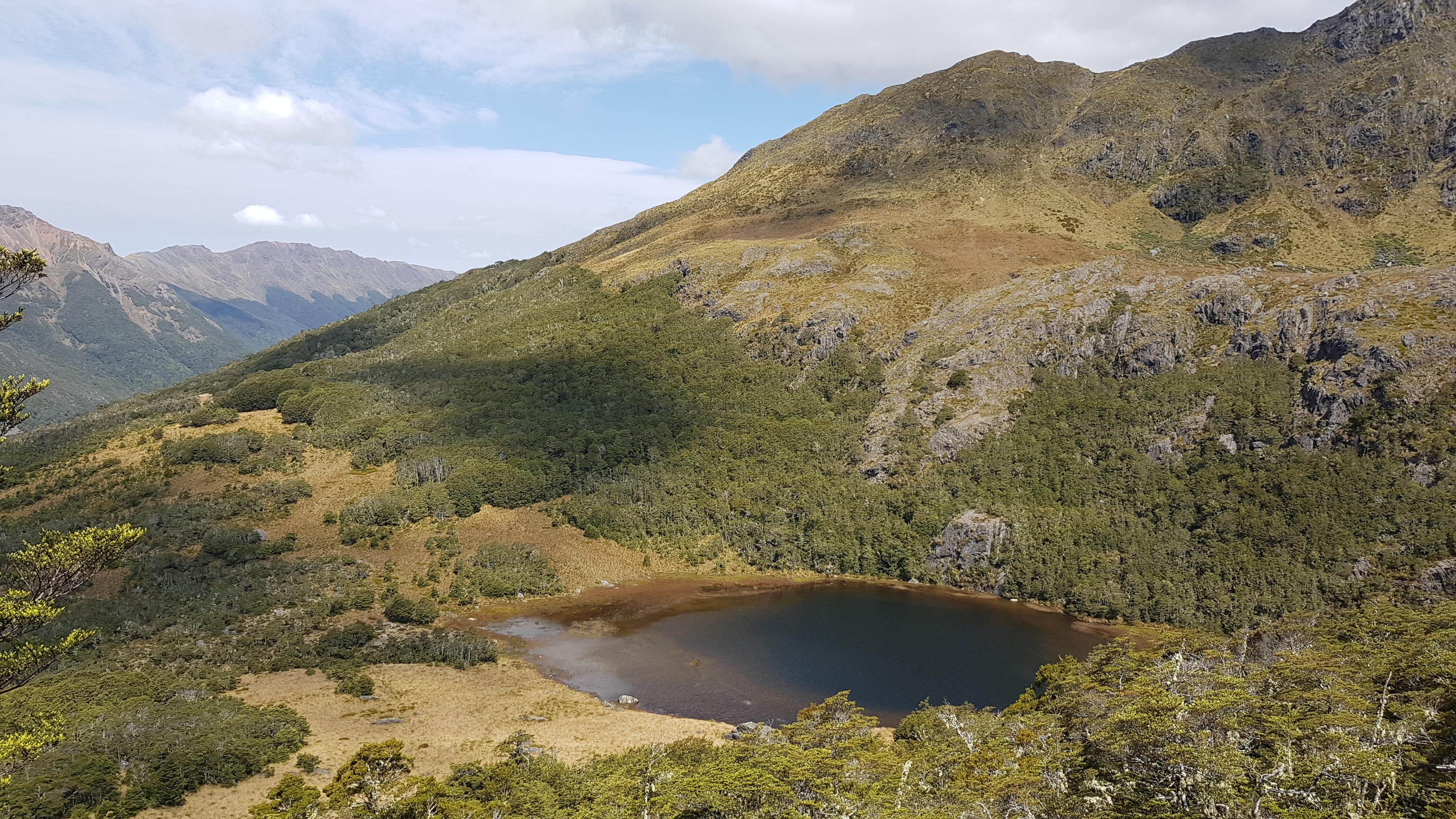 Camp Lake - The Peel Range Kahurangi National Park