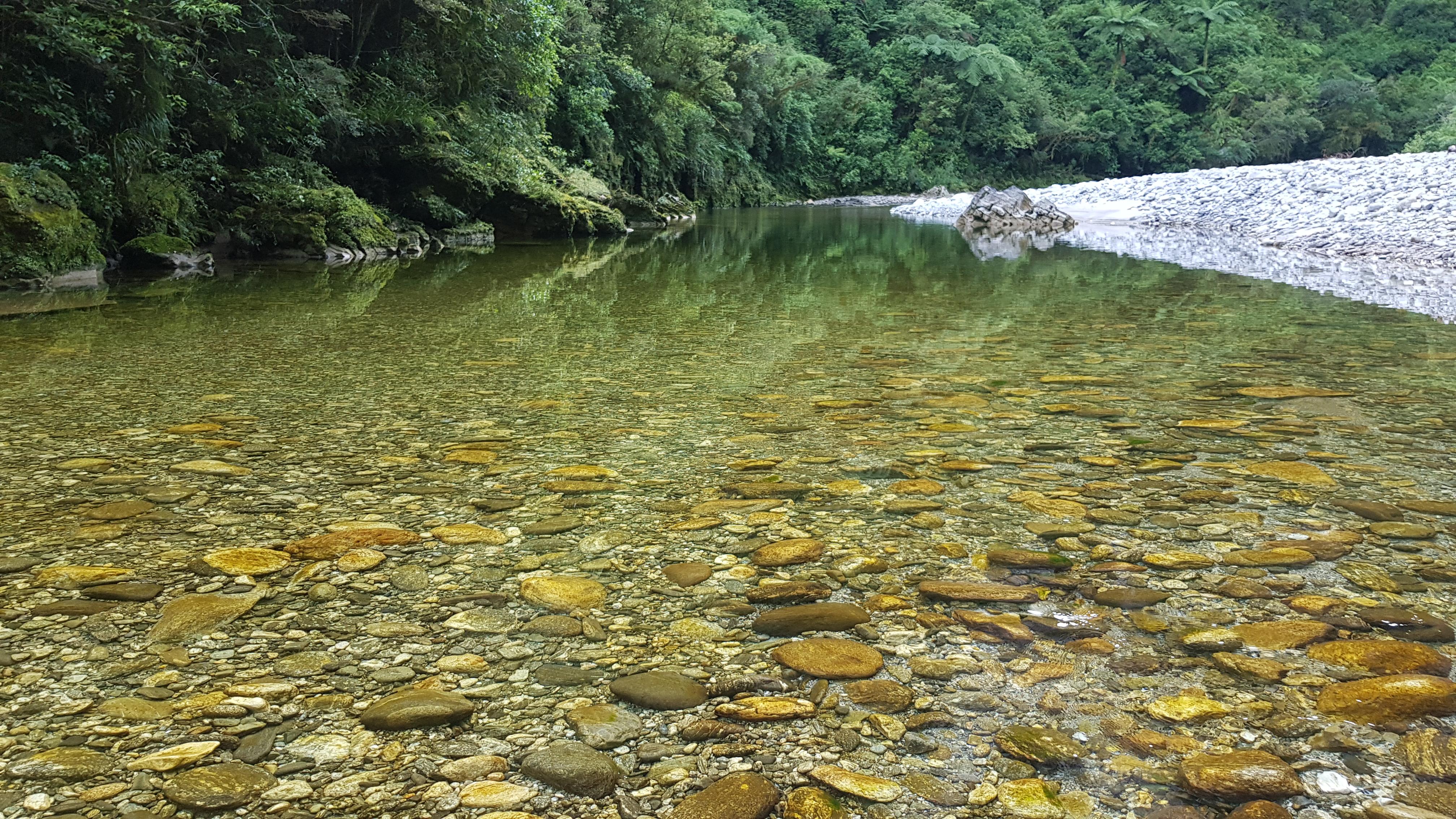 Crossing Dilemma Creek