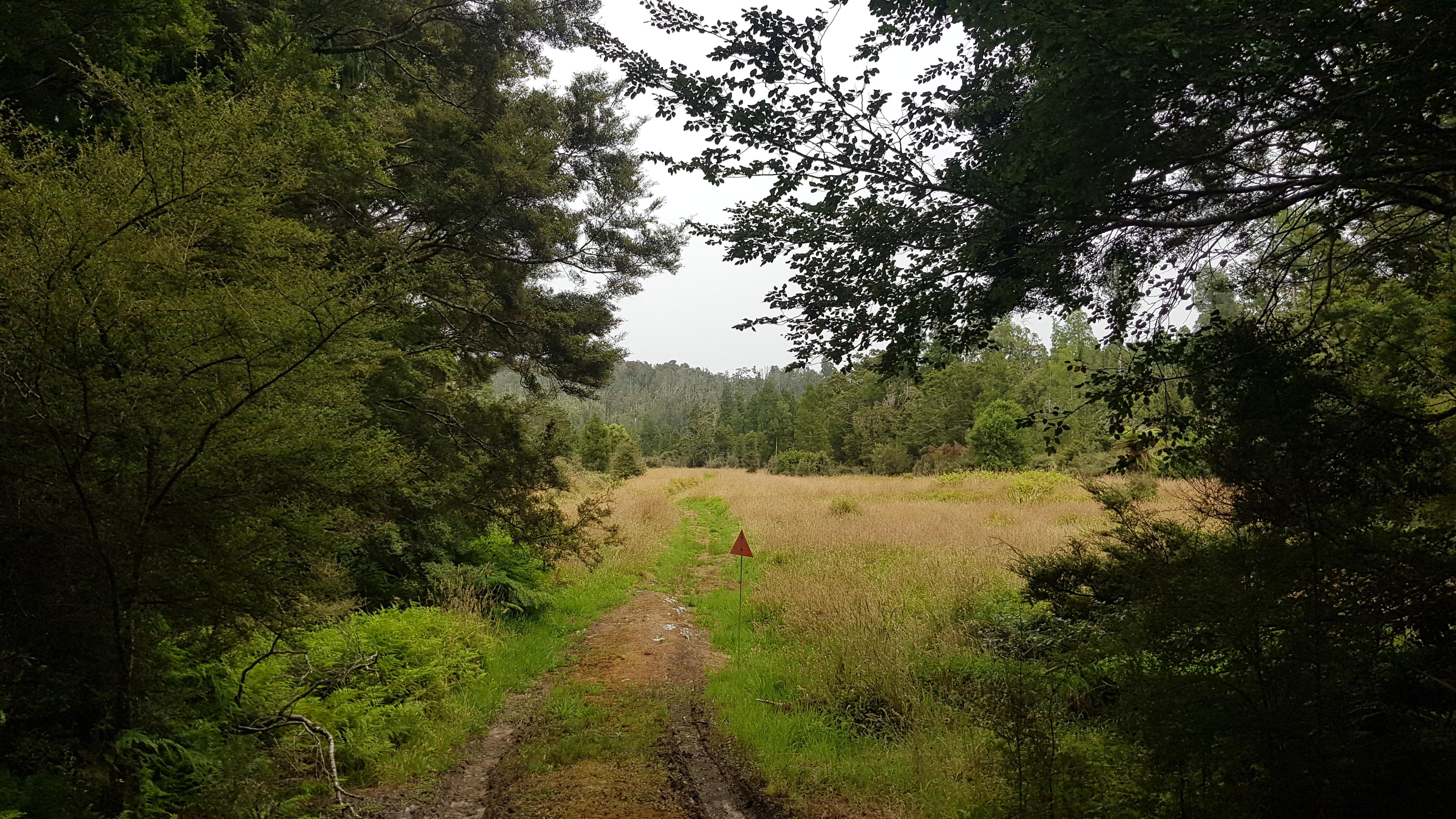 Almost at Bullock Creek