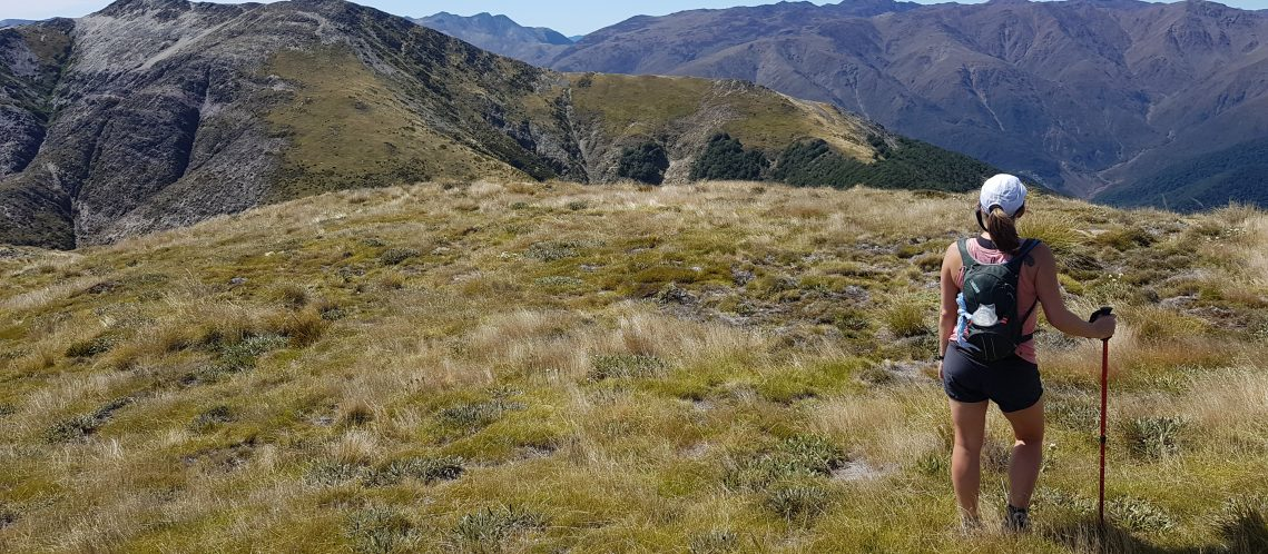 Almost at Gordons Knob looking across to the Red Hills