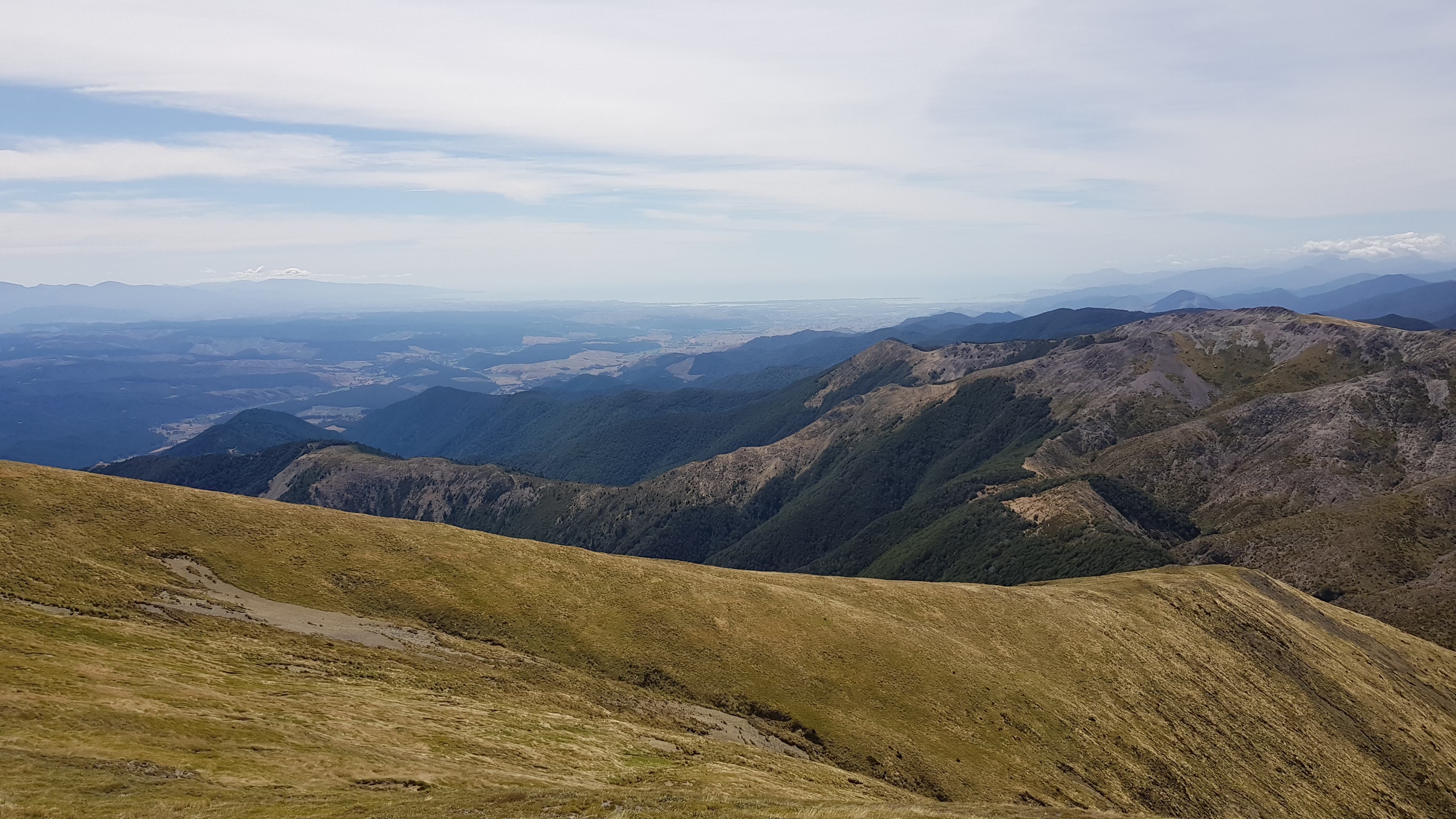 Heading back down from the Gordon Tops with Tasman Bay in the distance