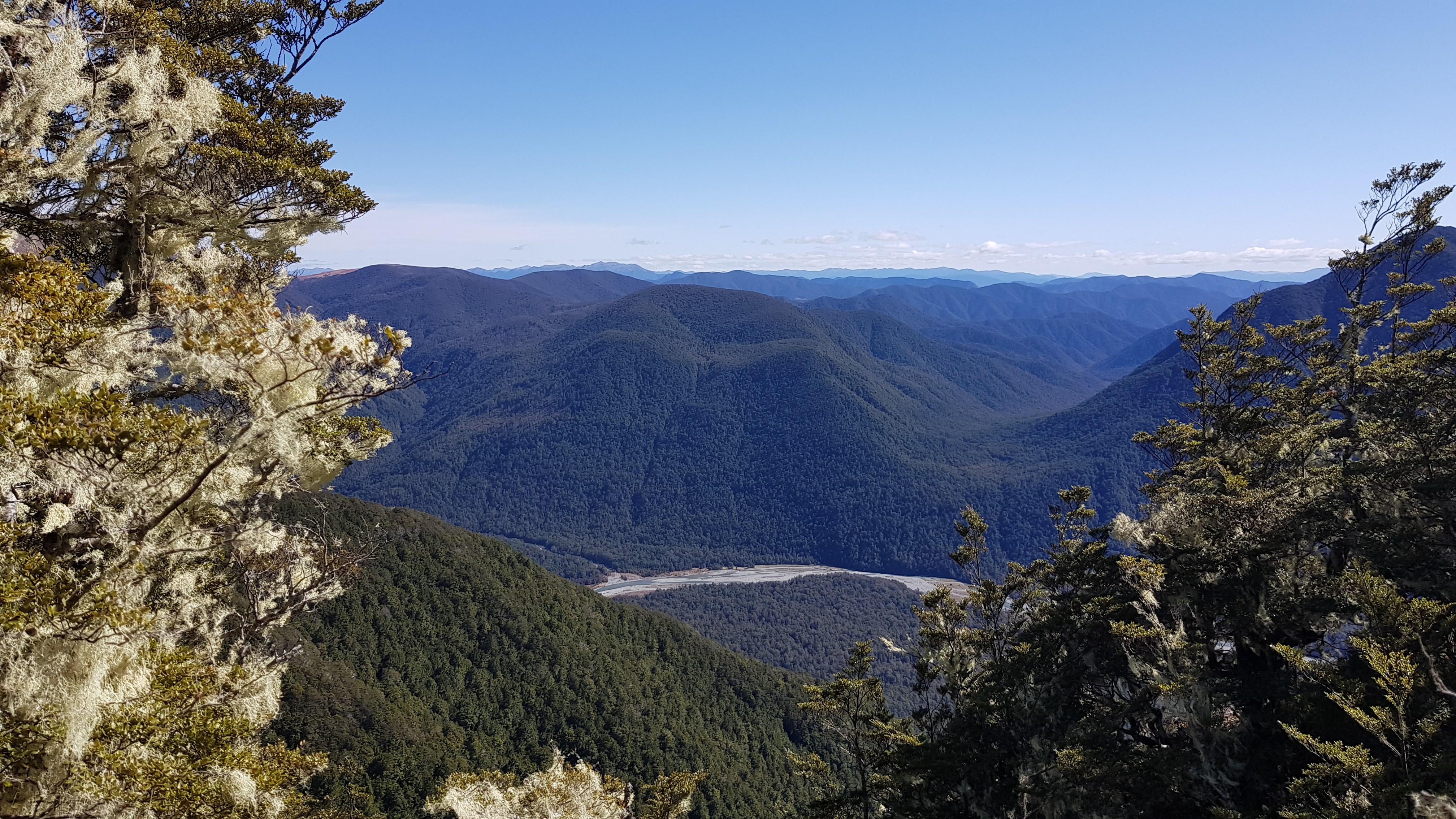 Mt Misery track - DUrville river