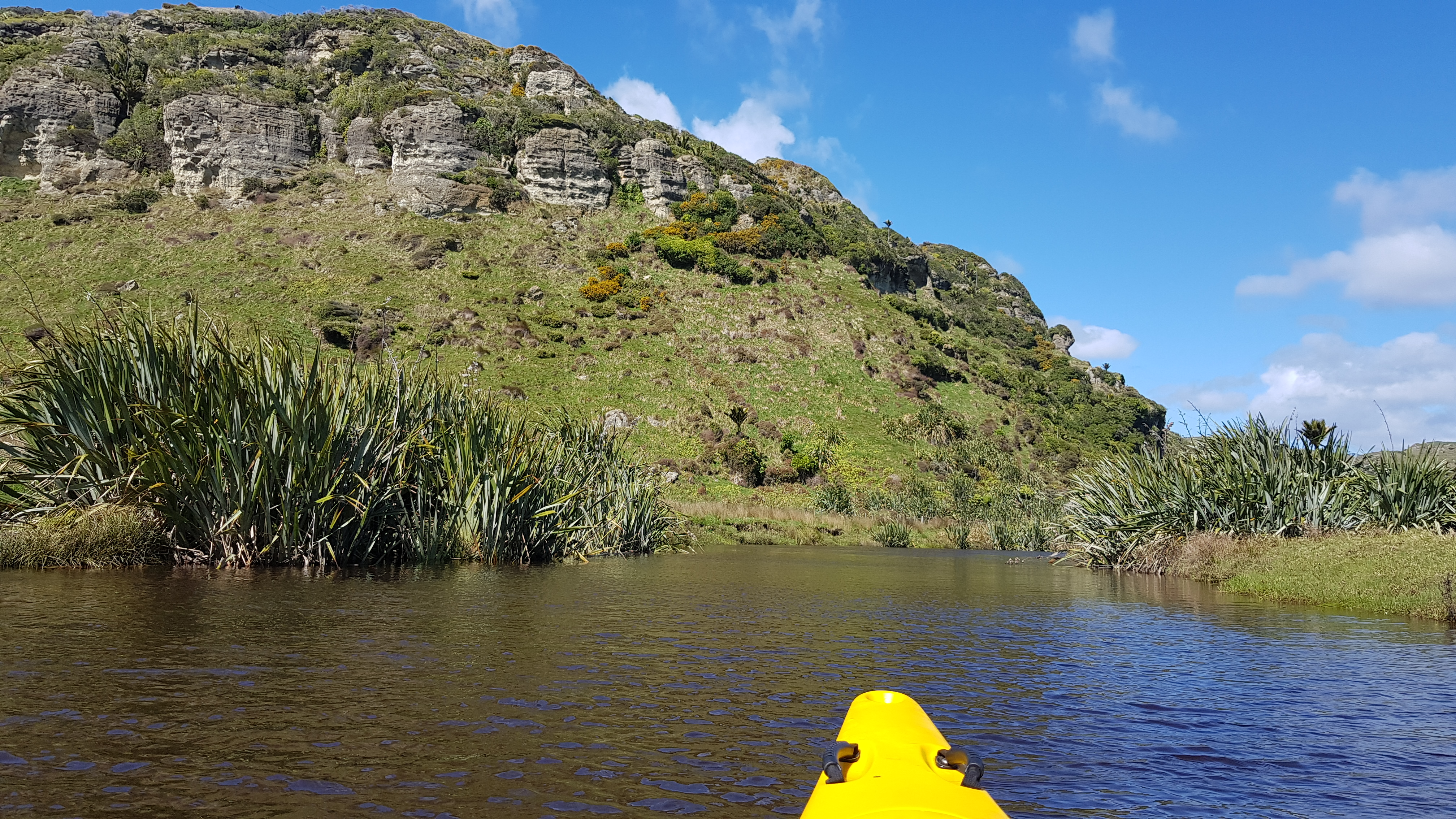 Paddling Kōwhai Creek