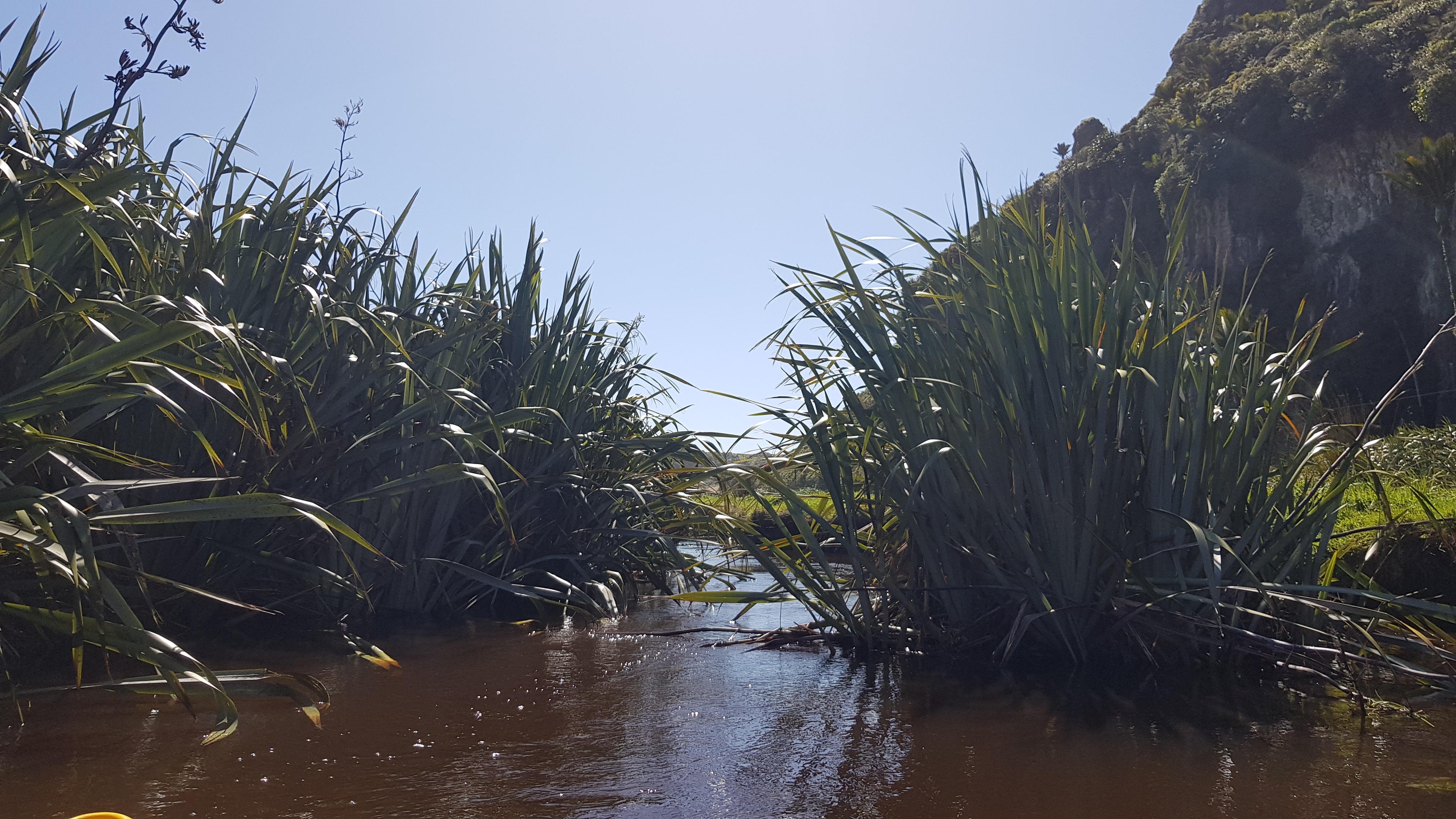 Paddling up Kōwhai Creek to Lake Otuhie