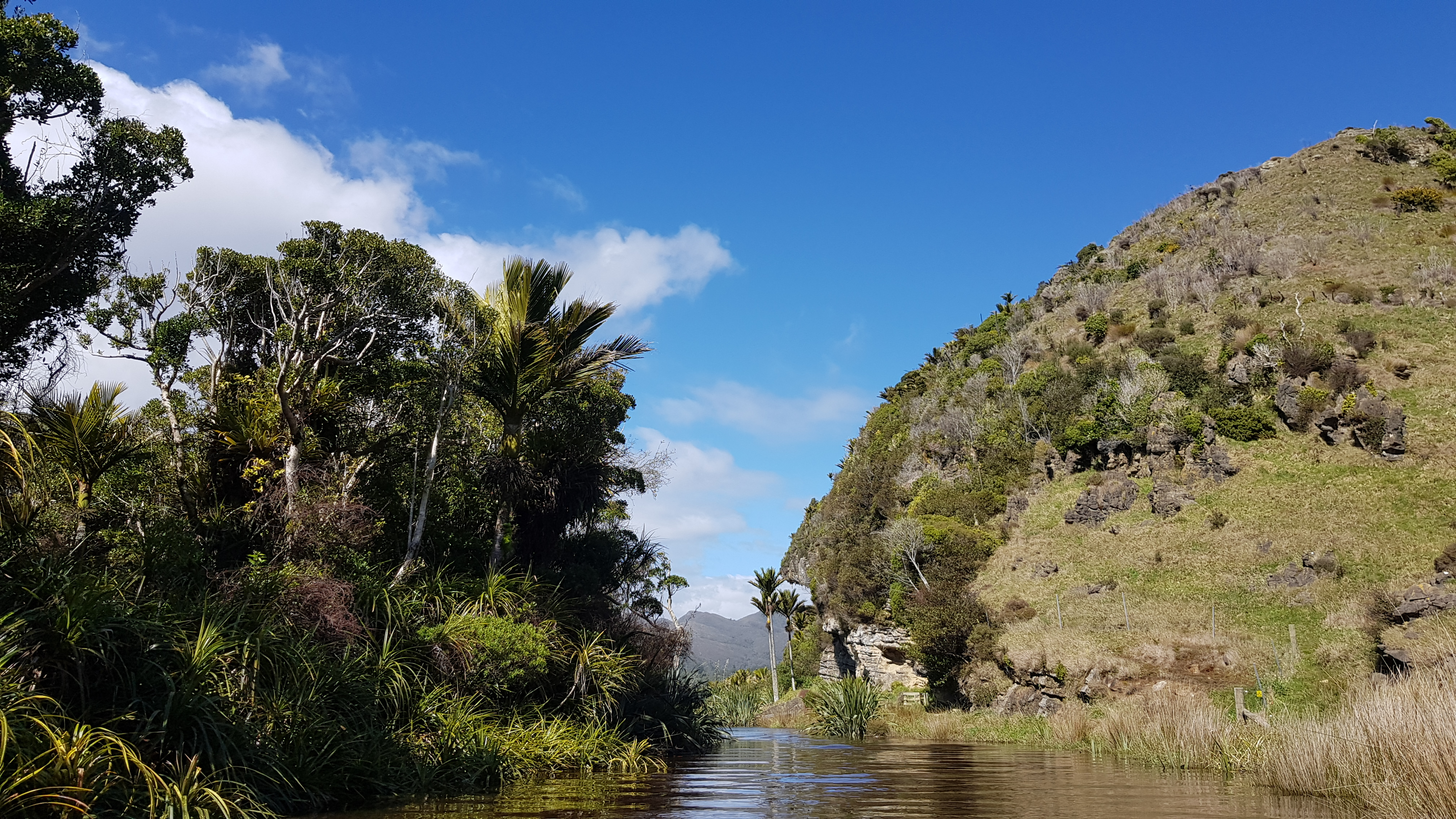 Paddling Kōwhai Creek to Lake Otuhie