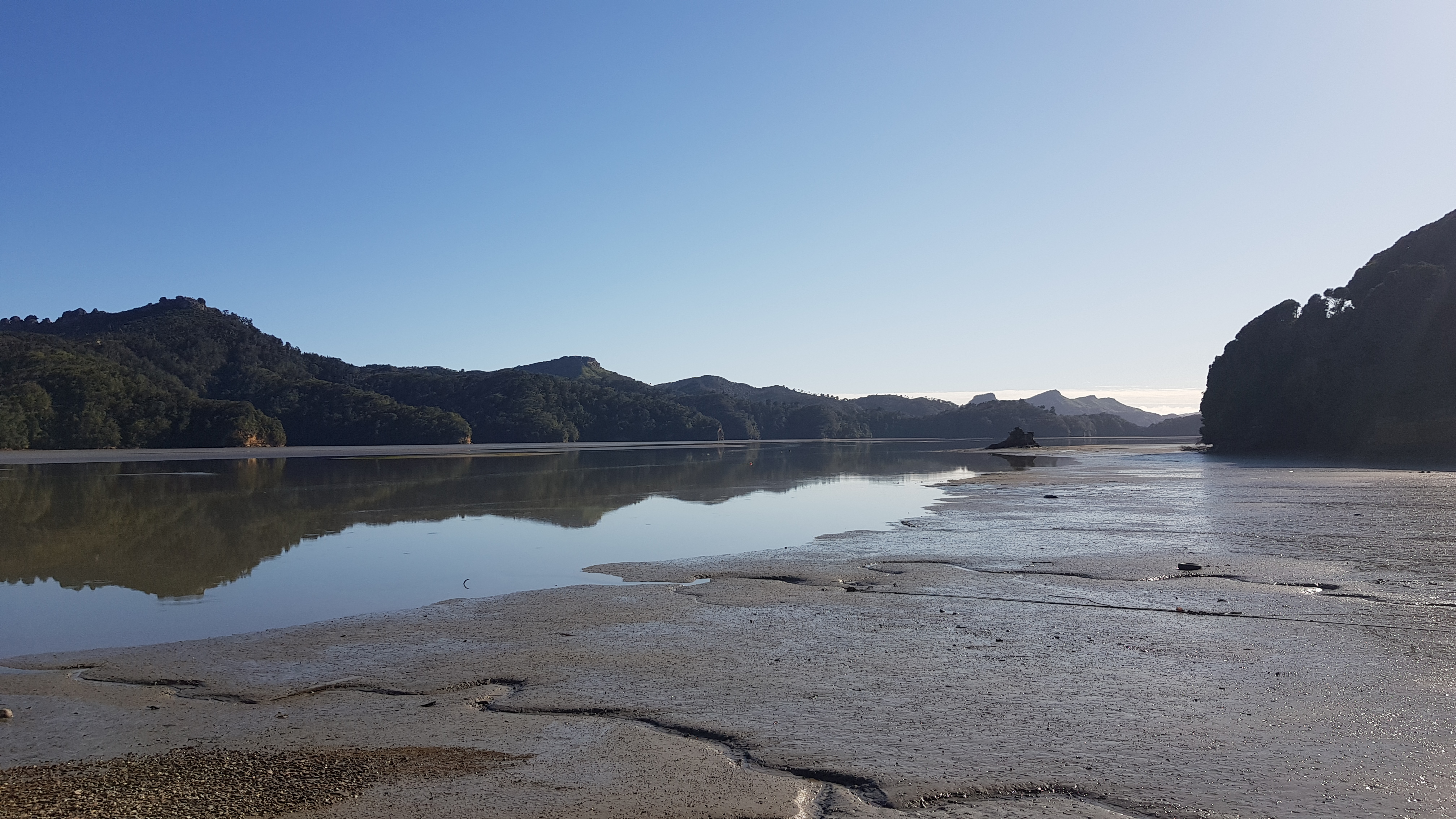 Low tide at Westhaven - Whanganui Inlet