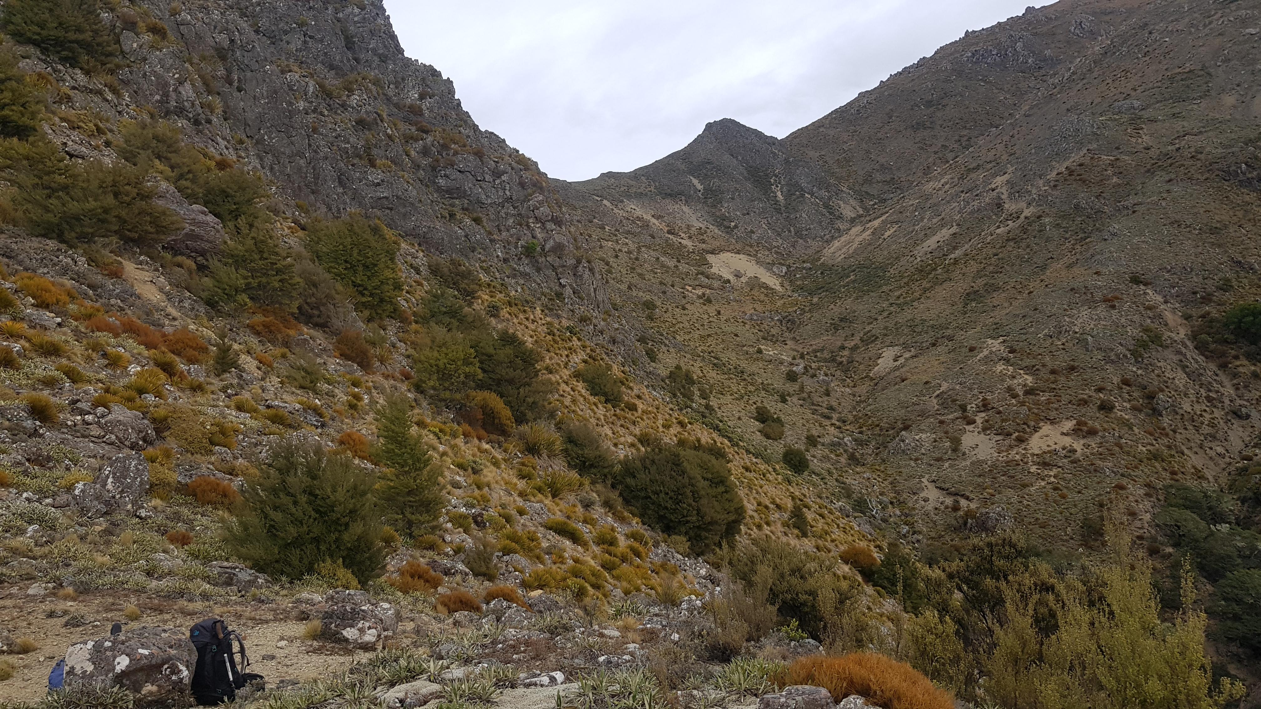 Towards Blairich mountain
