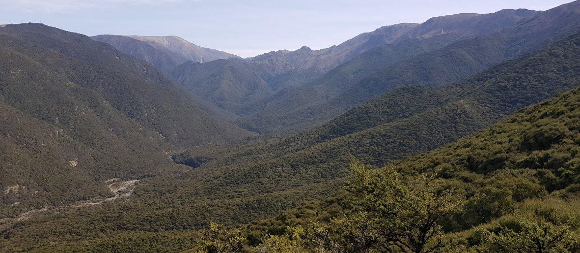 Black Birch and Blairich Ranges Marlborough