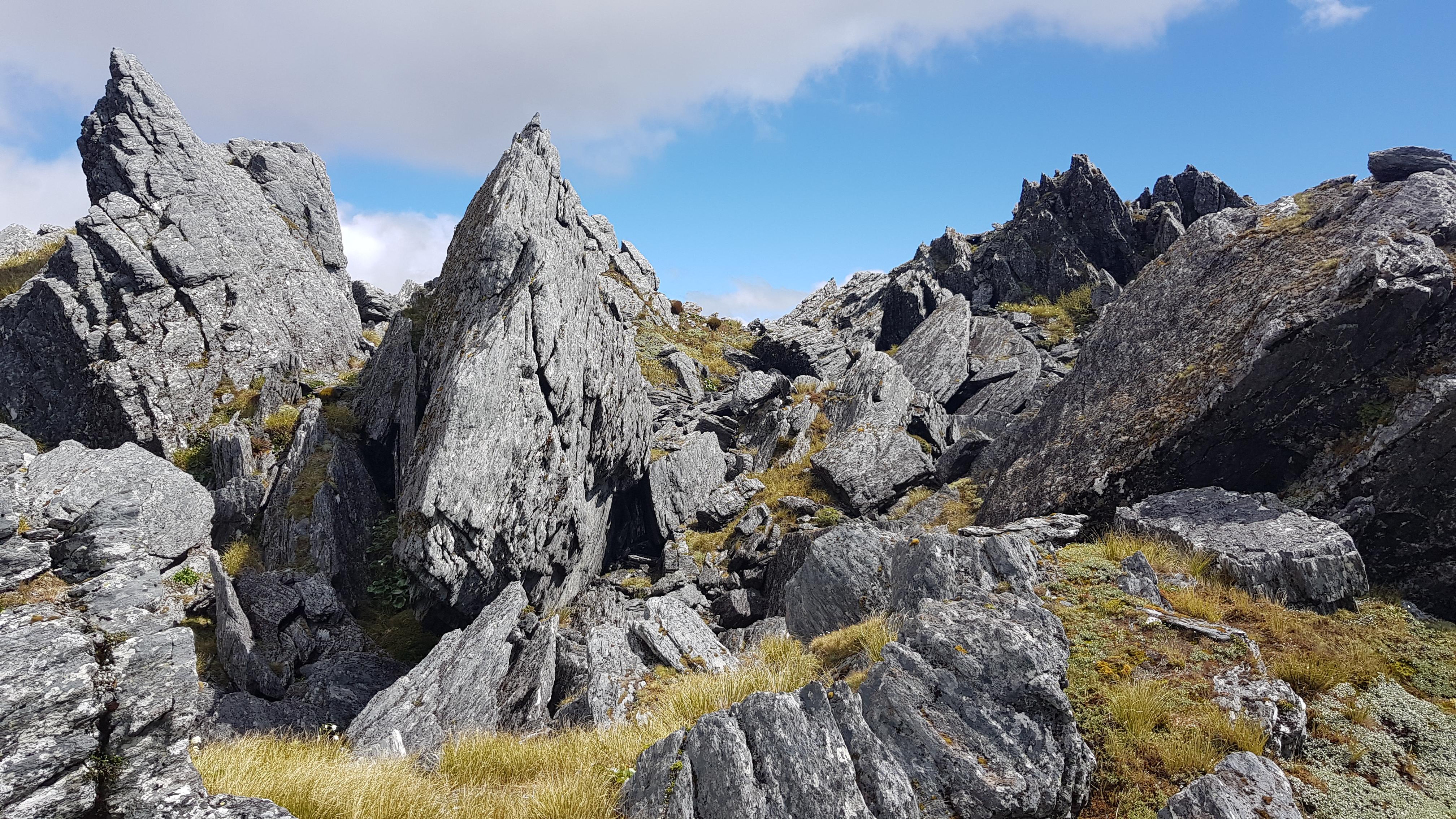 Through the boulder field