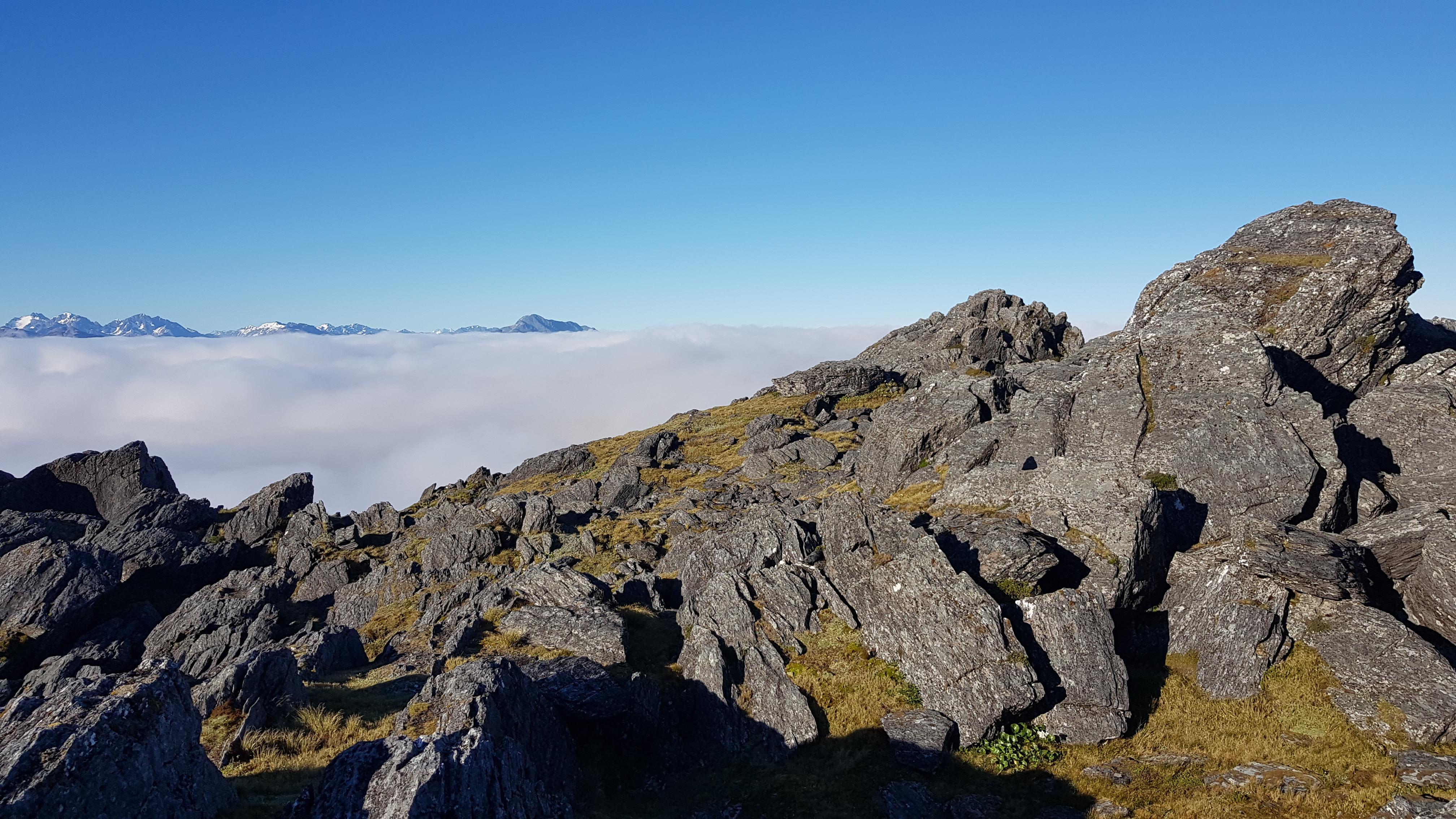 Breakfast with a view - Kaimata range tops