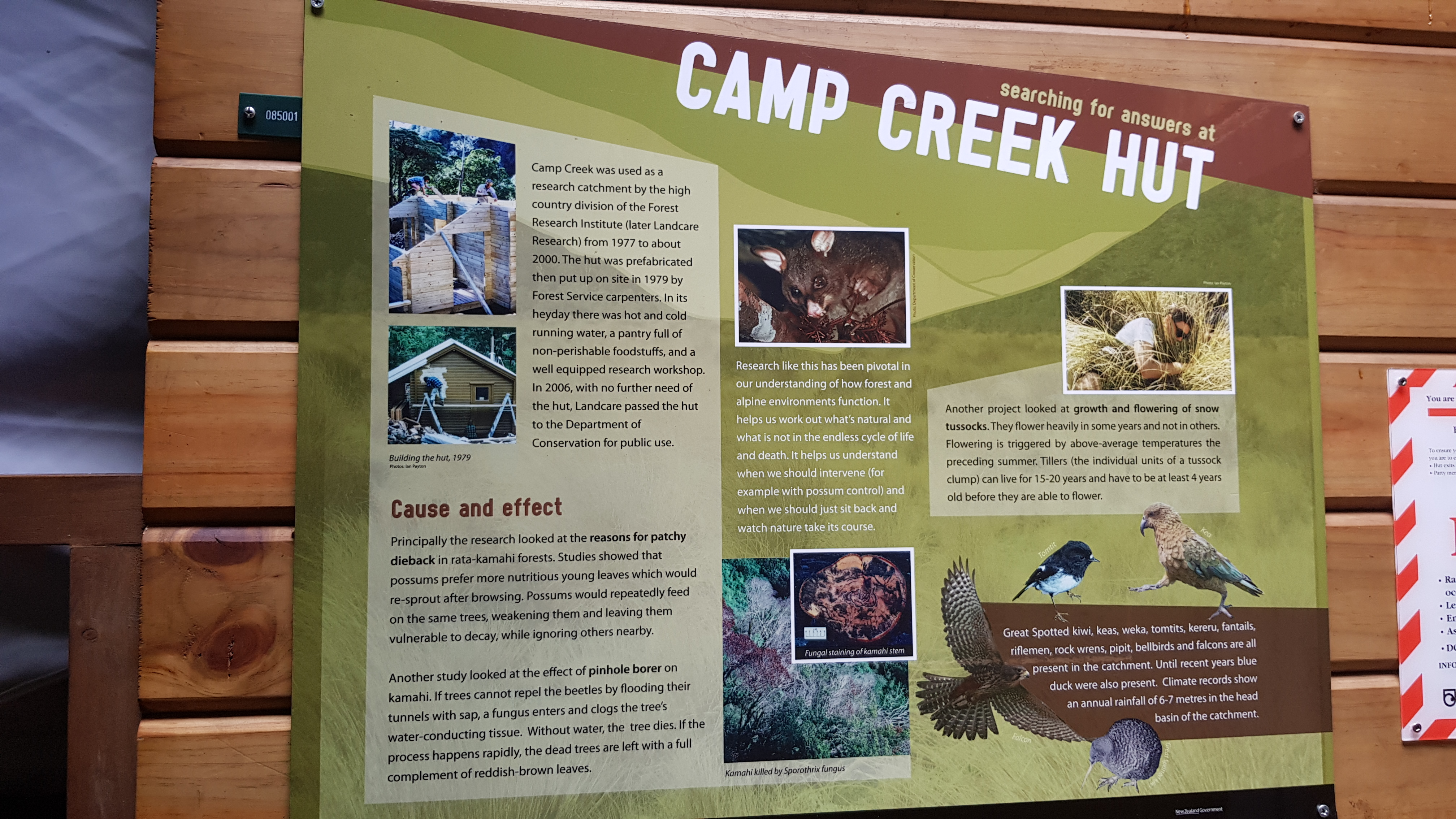 Some background on Camp Creek hut