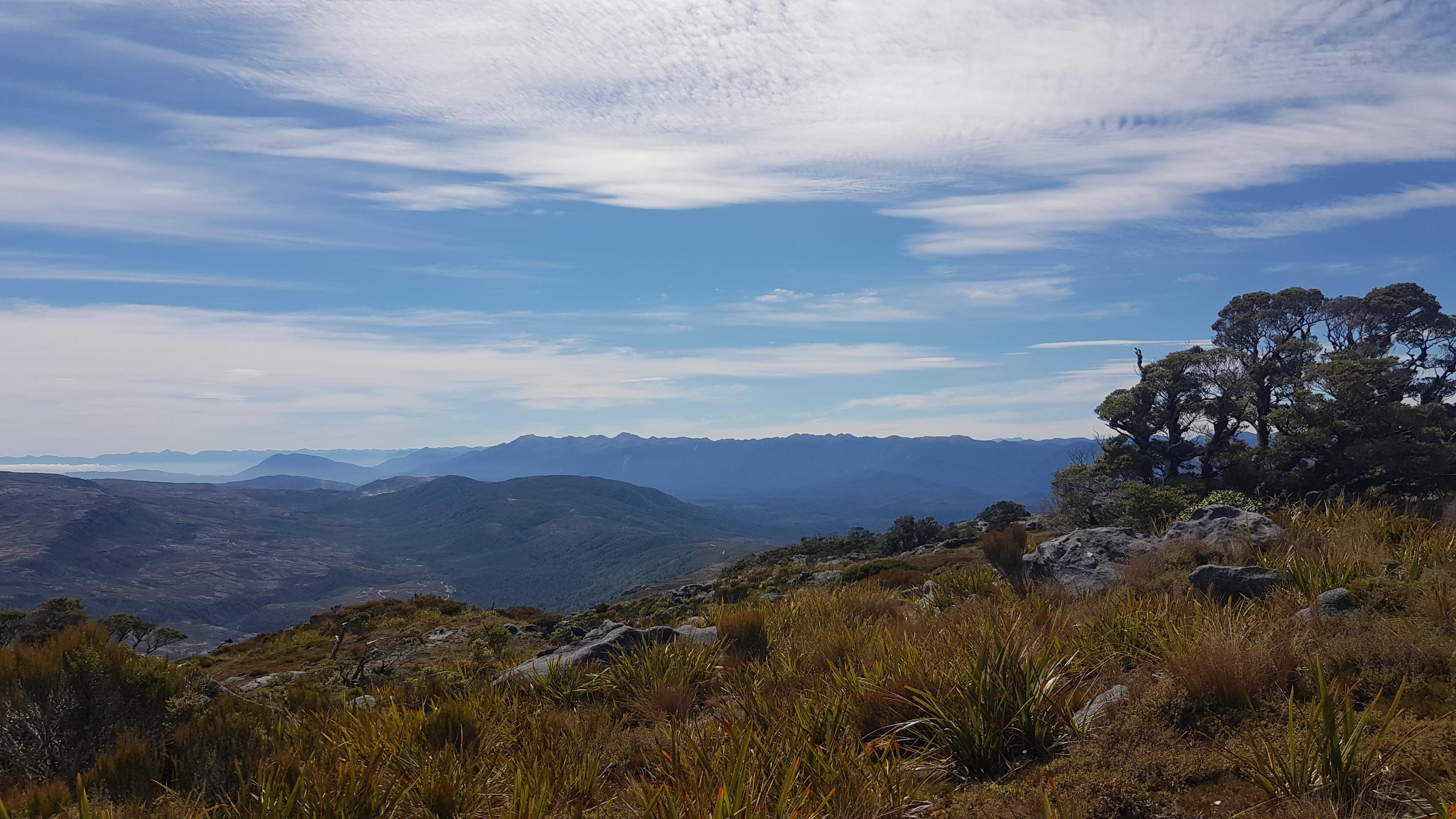 Myra's track to Mt William