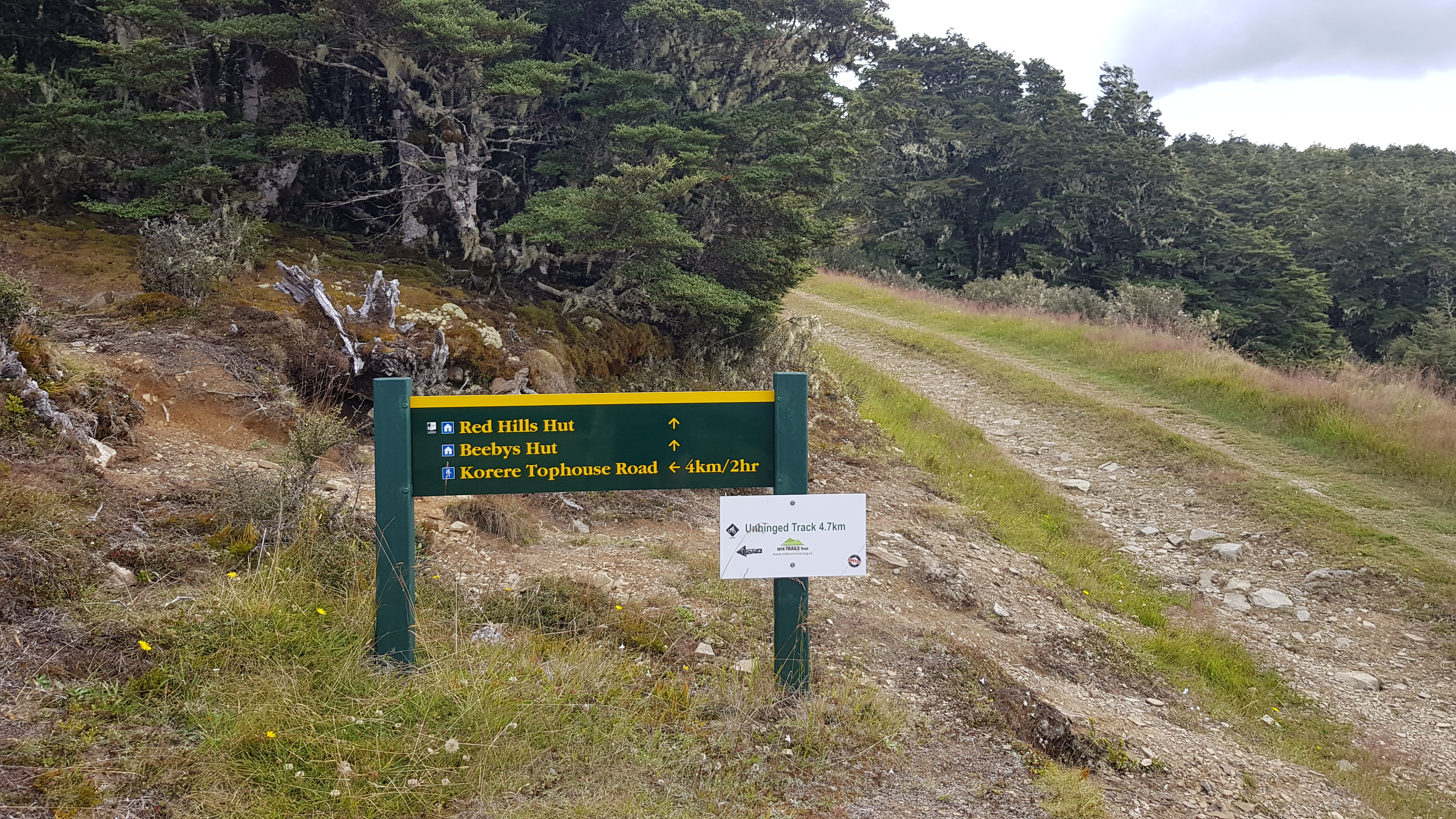 The junction with the main track to Beebys Knob