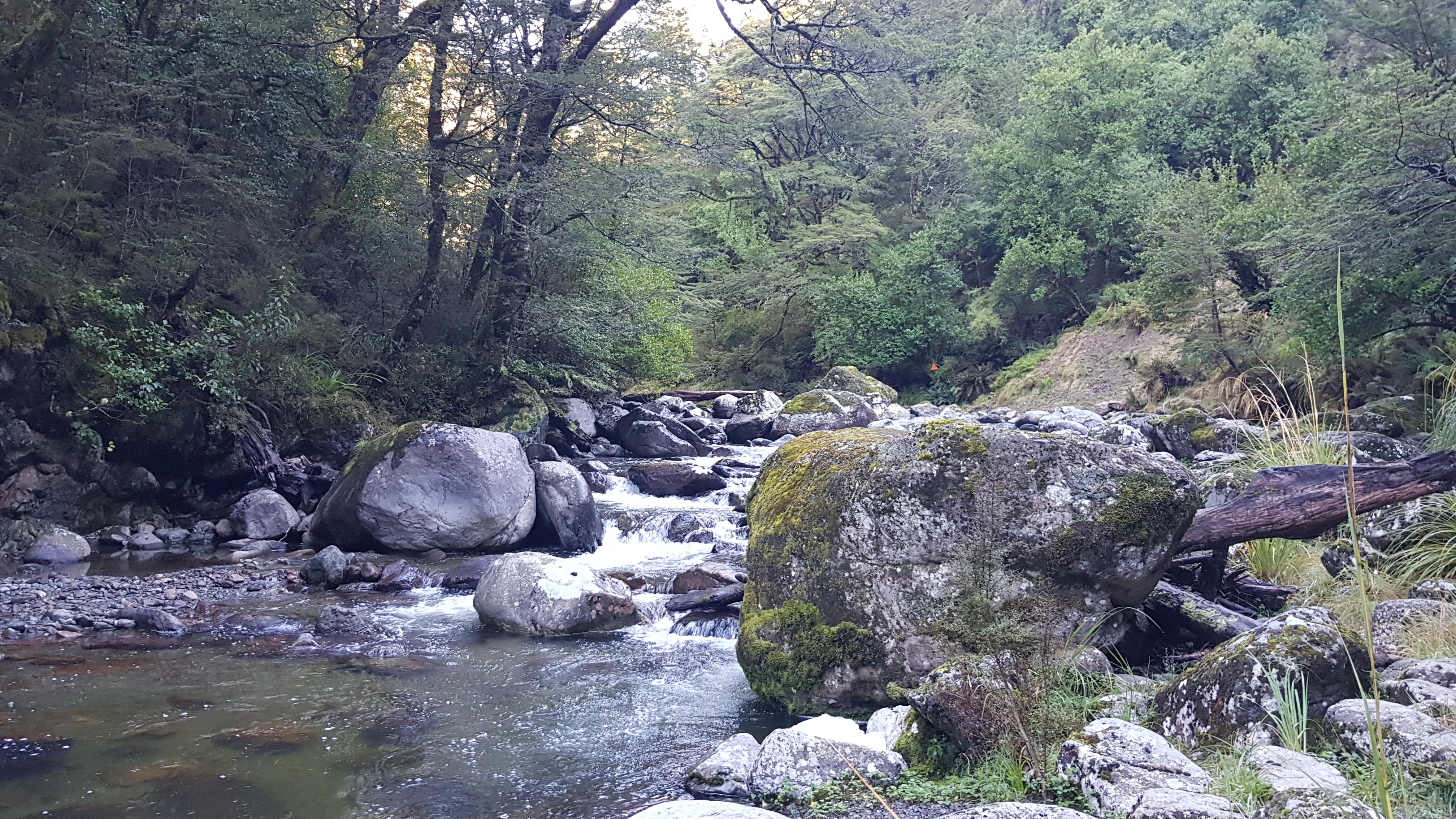 Bowyers Stream to Pinnacles hut