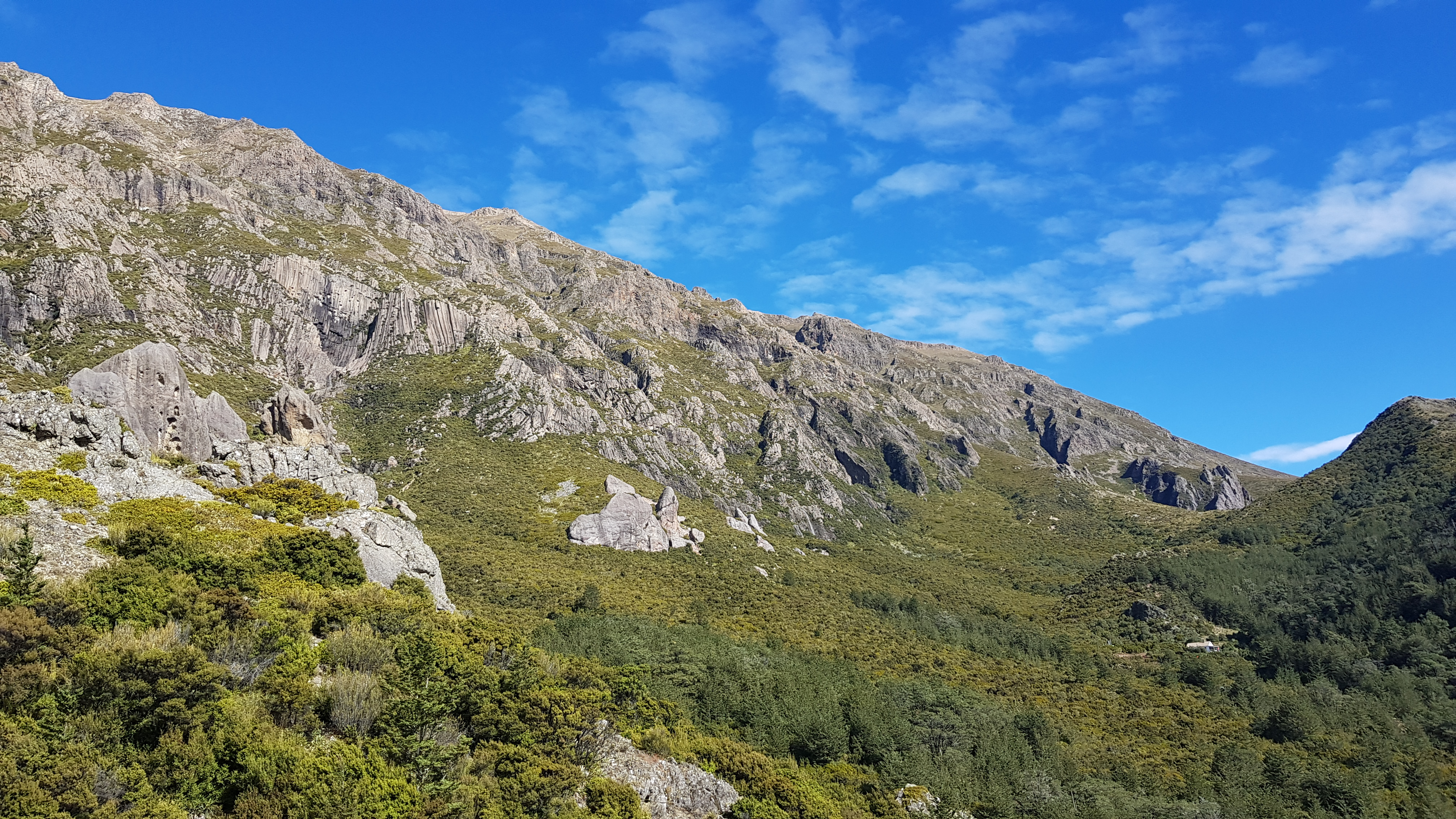 Towards Pinnacles hut