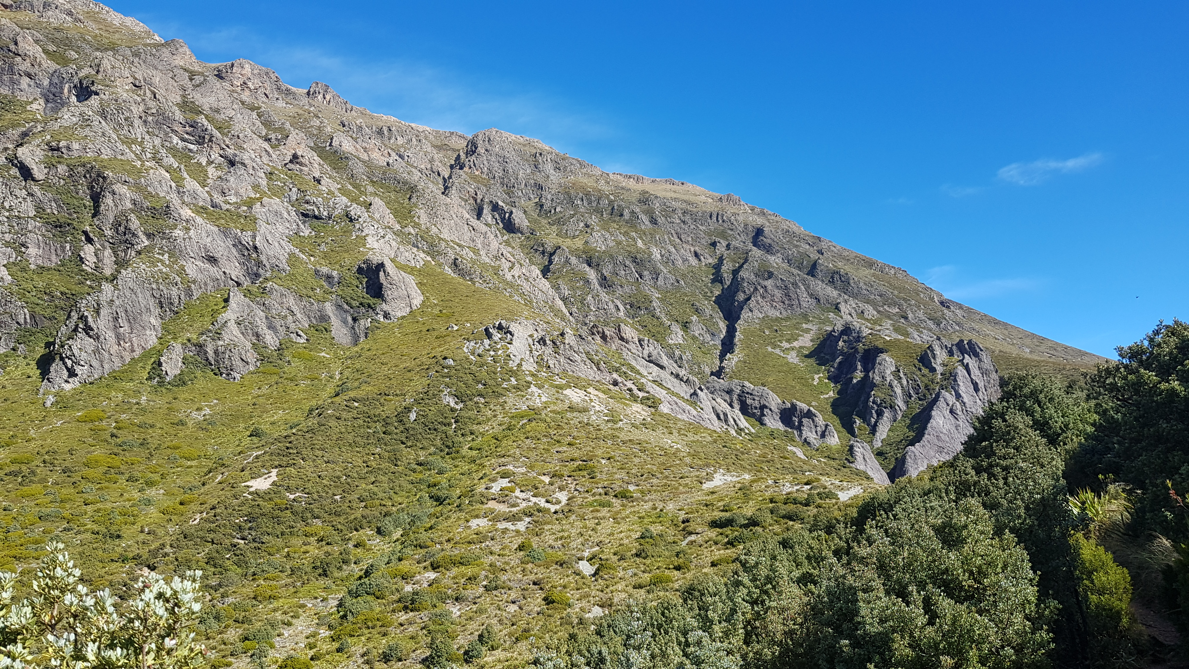 Near Pinnacles hut Mt Somers