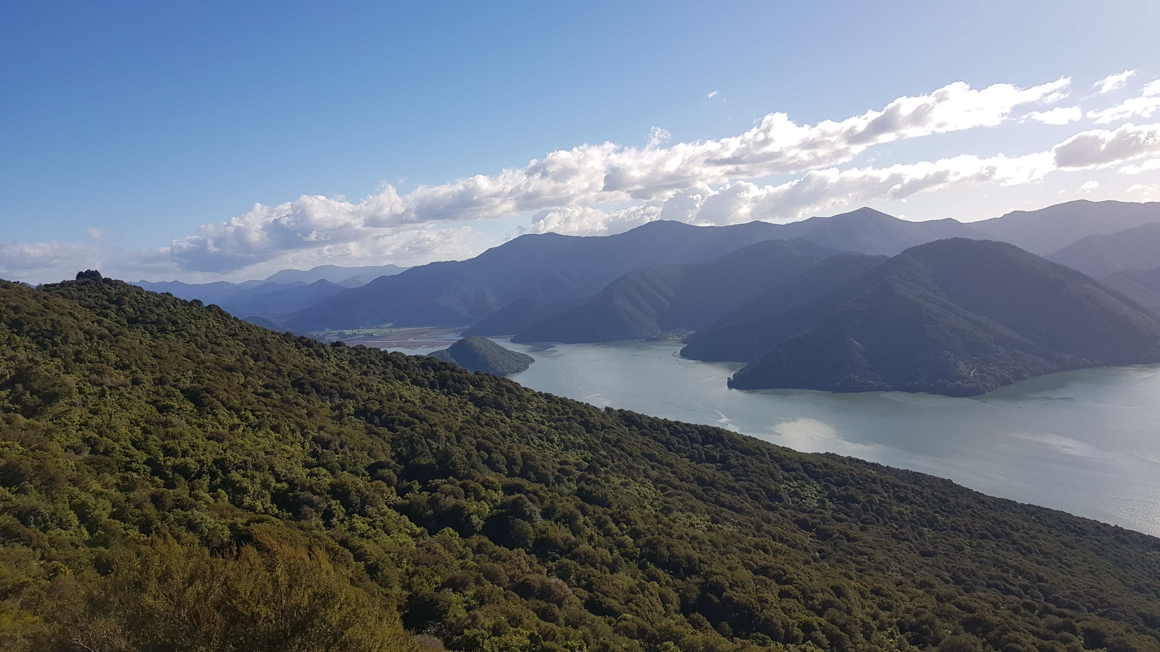 Views towards Havelock from Mt Cawte