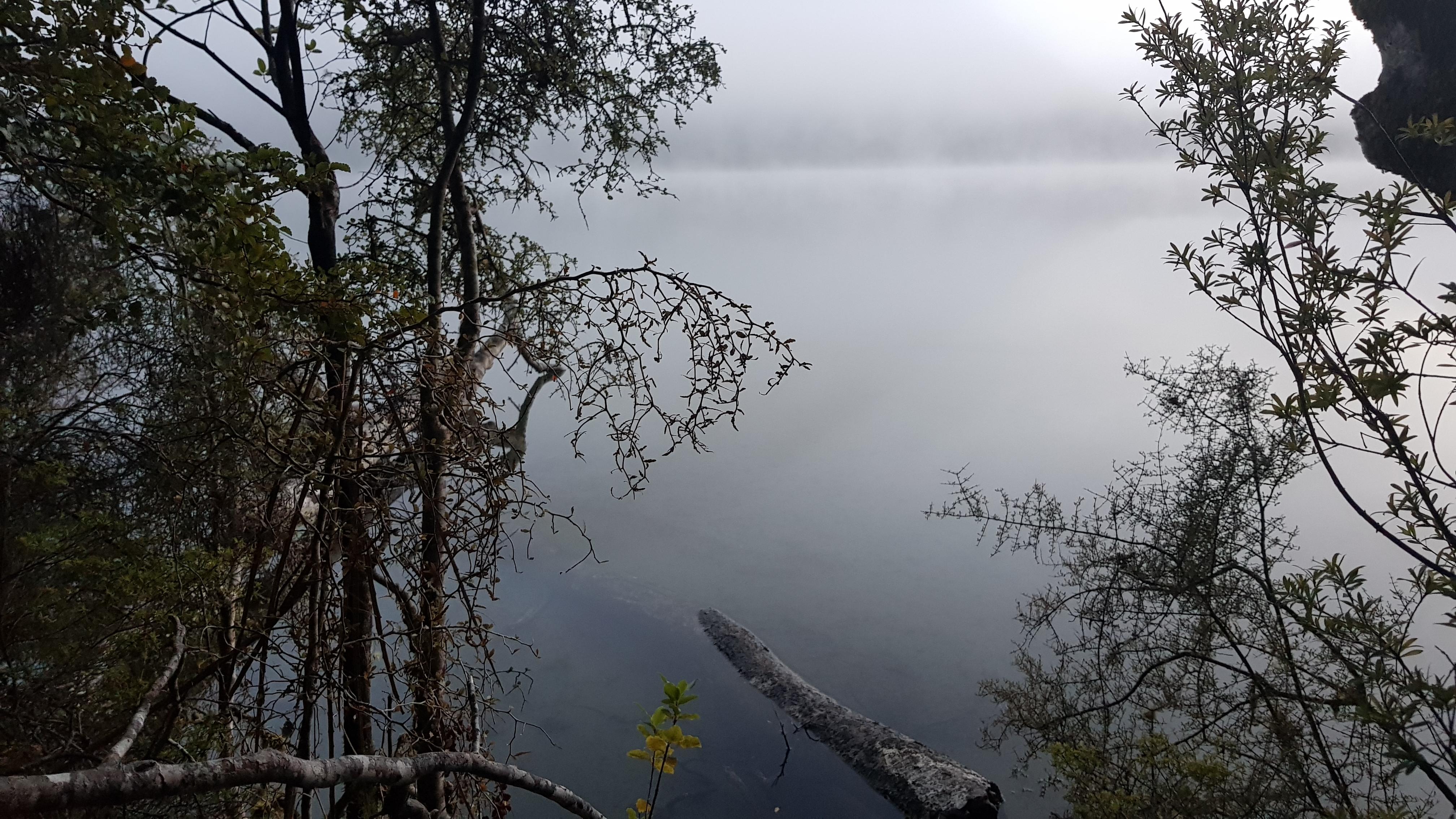 Lake Daniell
