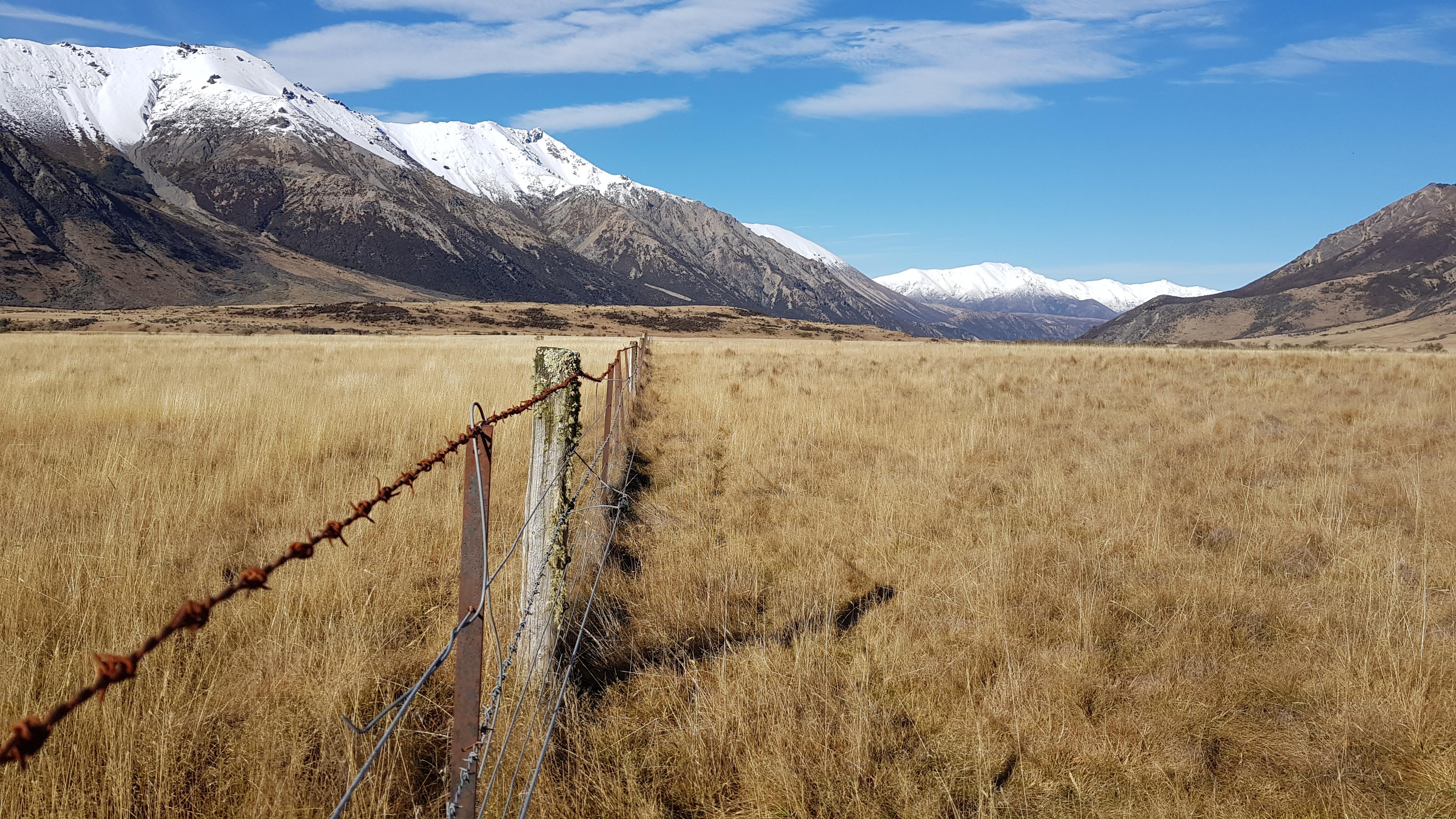 Down the Waiau valley
