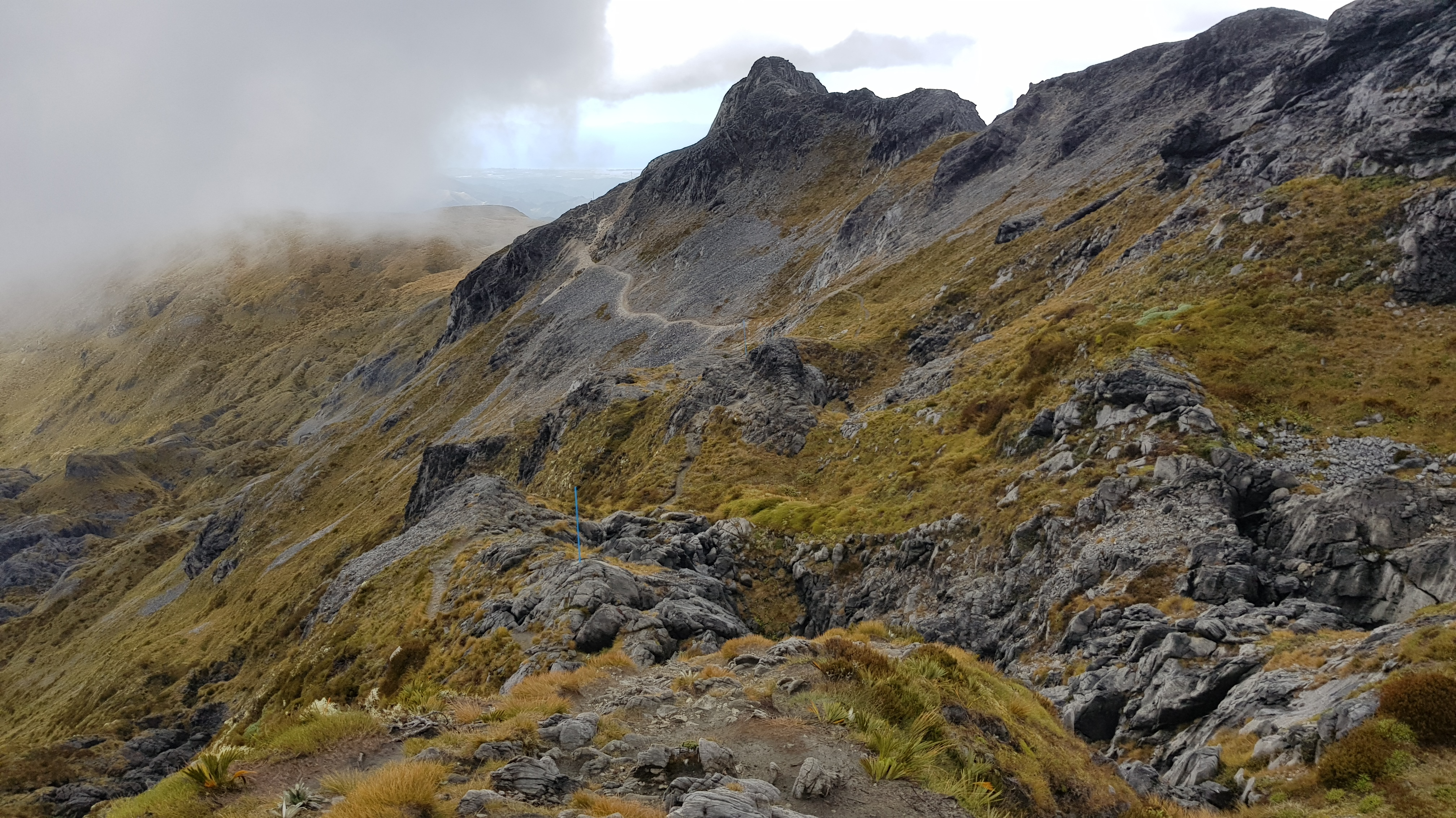 Looking back at the Mt Arthur Route