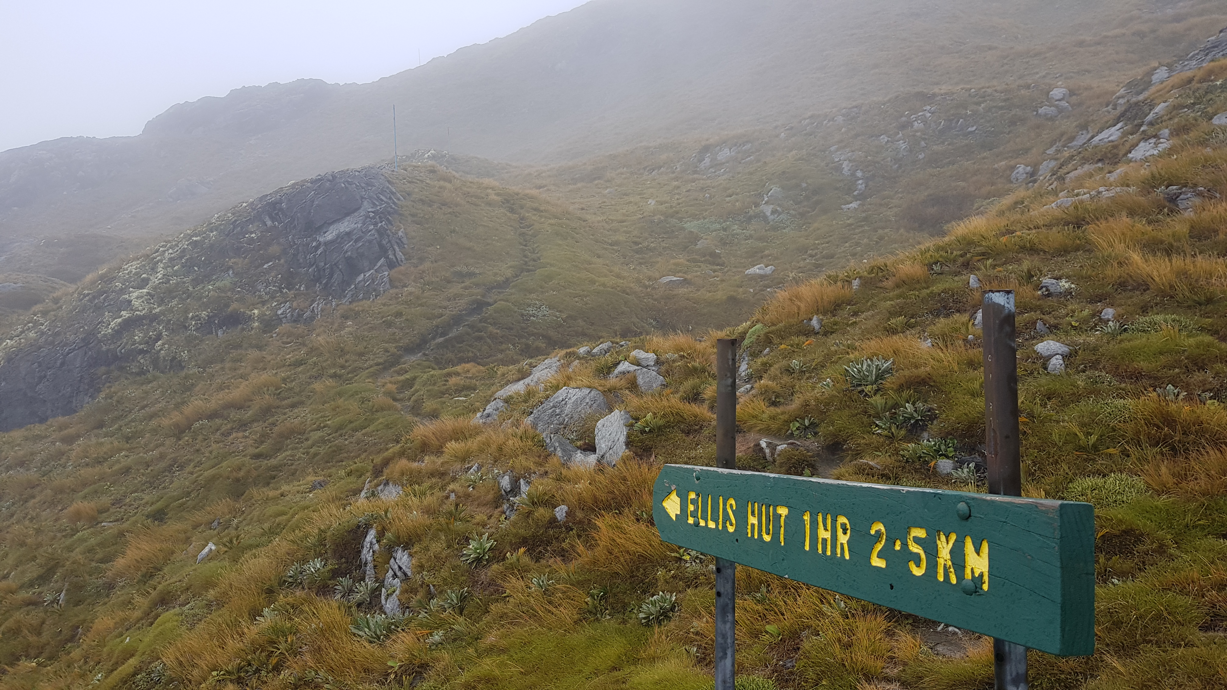 Ellis Basin Route turnoff from Mt Arthur Route