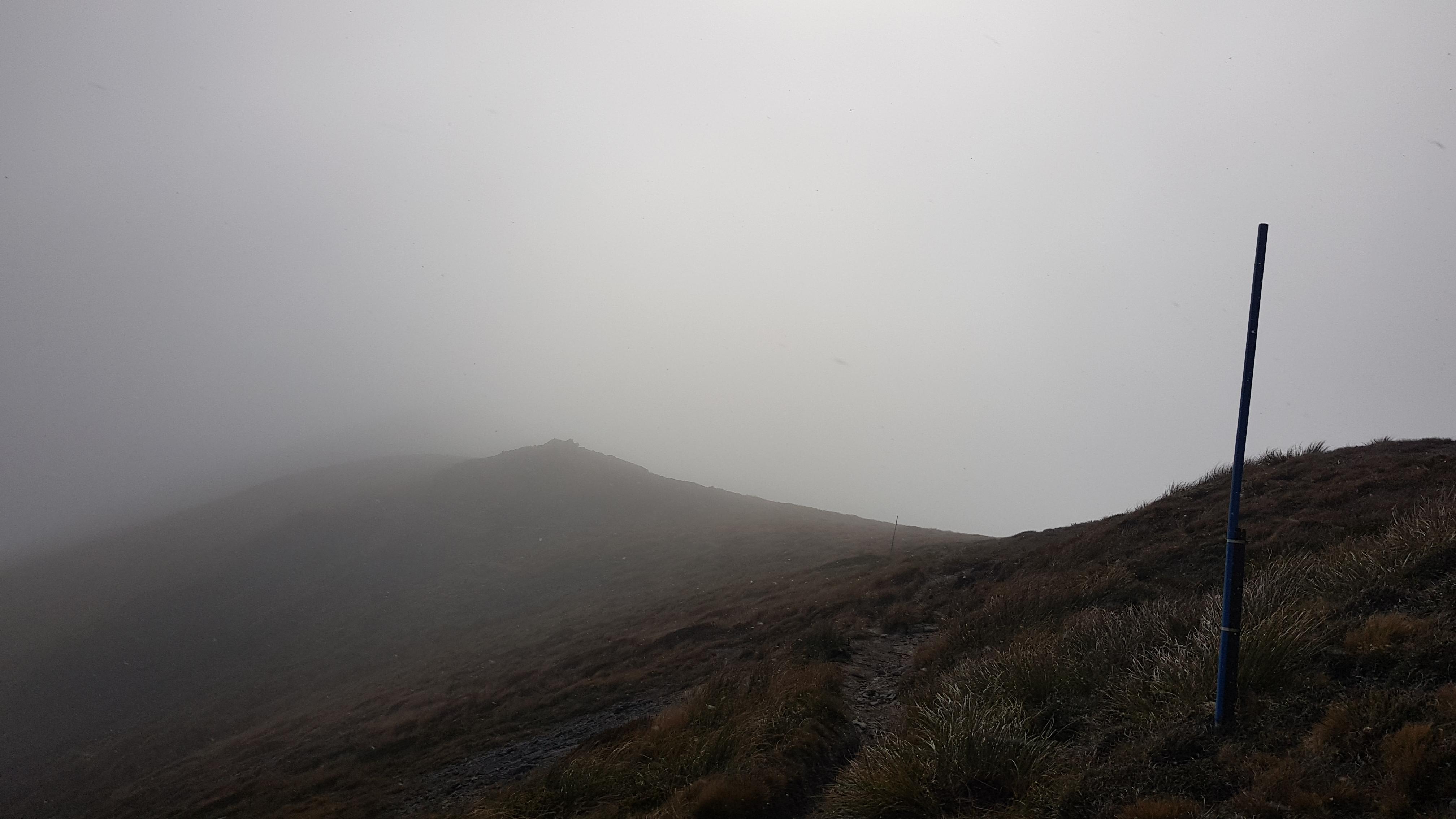 Above Horseshoe Basin