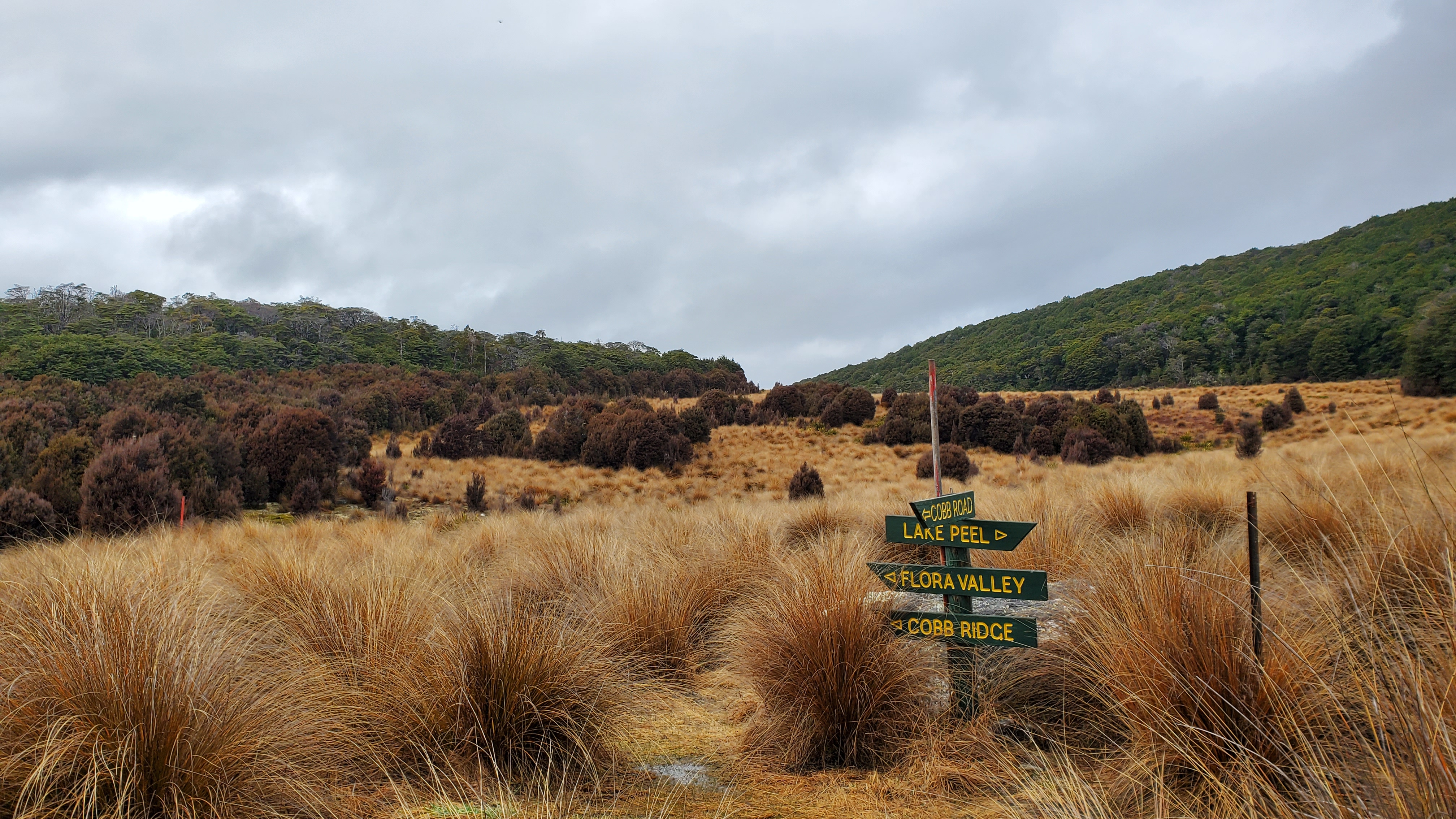 Track junction at Peat Valley