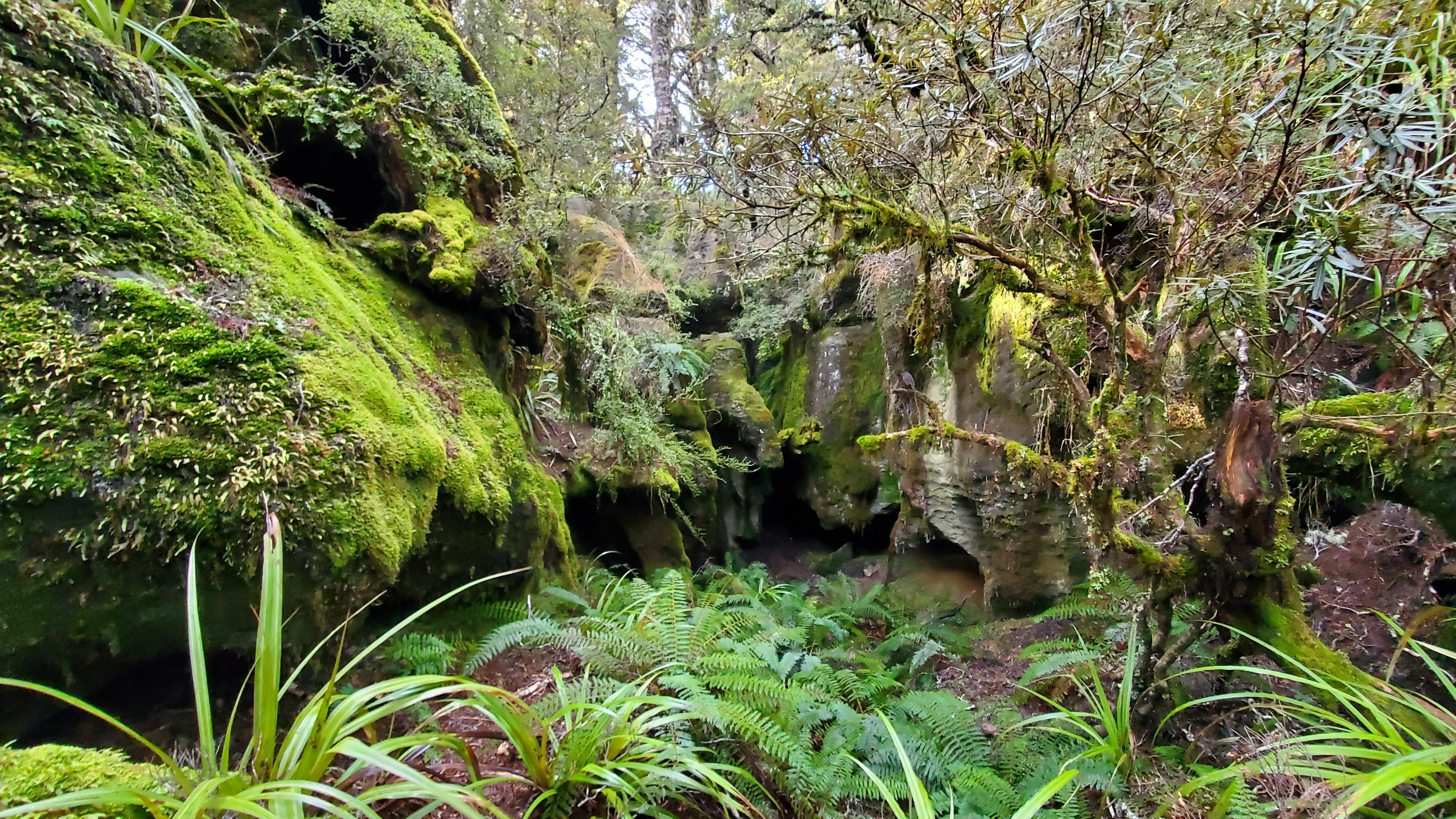 Caves near Balloon hut