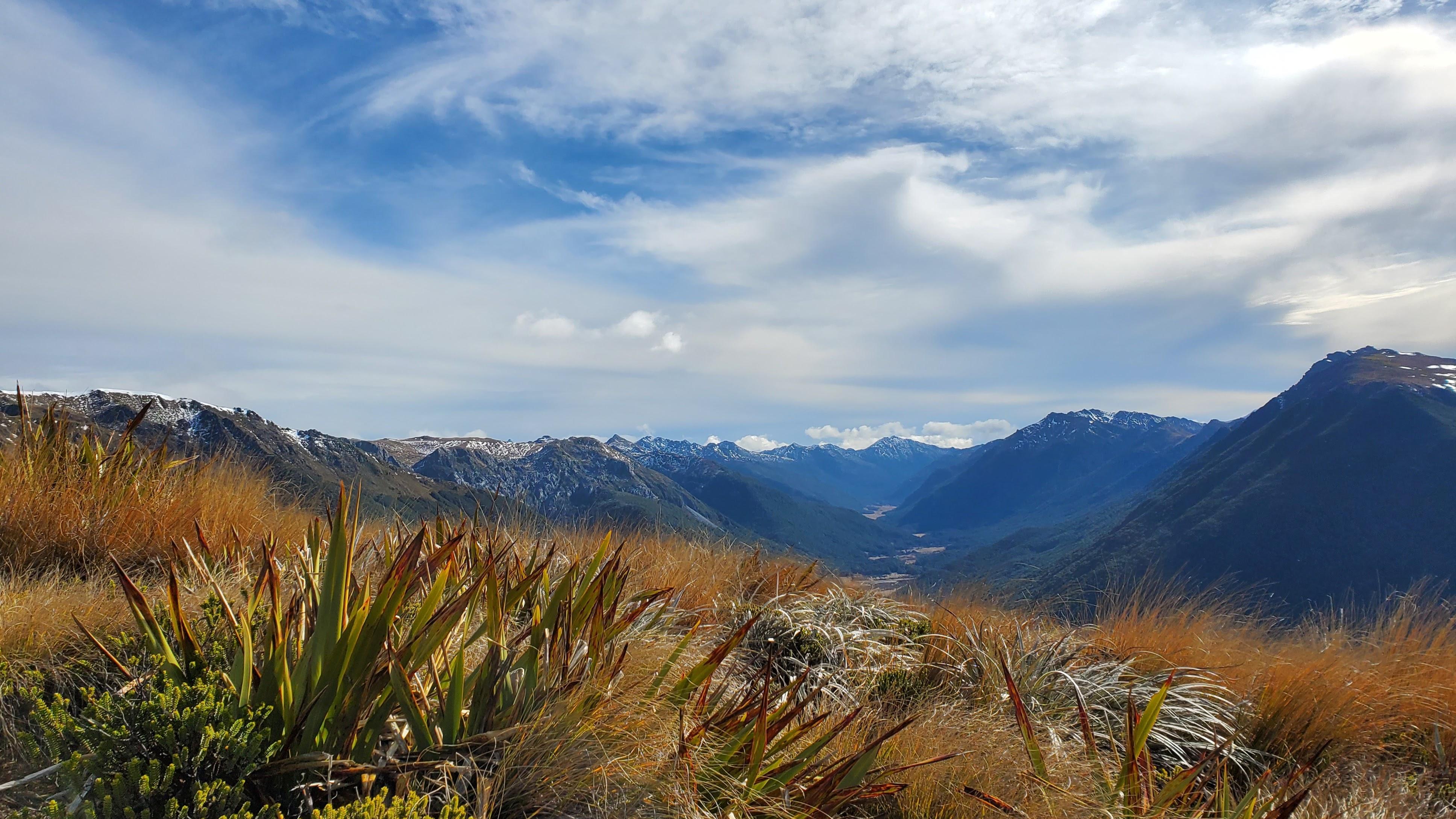 Cobb ridge towards Mt Peel